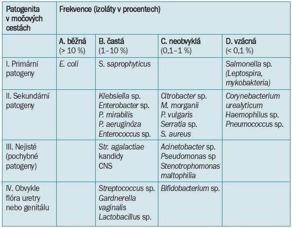 Klasifikace uropatogenů - patogenita a frekvence výskytu mikroorganizmů ve vzorku ze středního proudu moči spontánně vymočené (upraveno dle [18]).