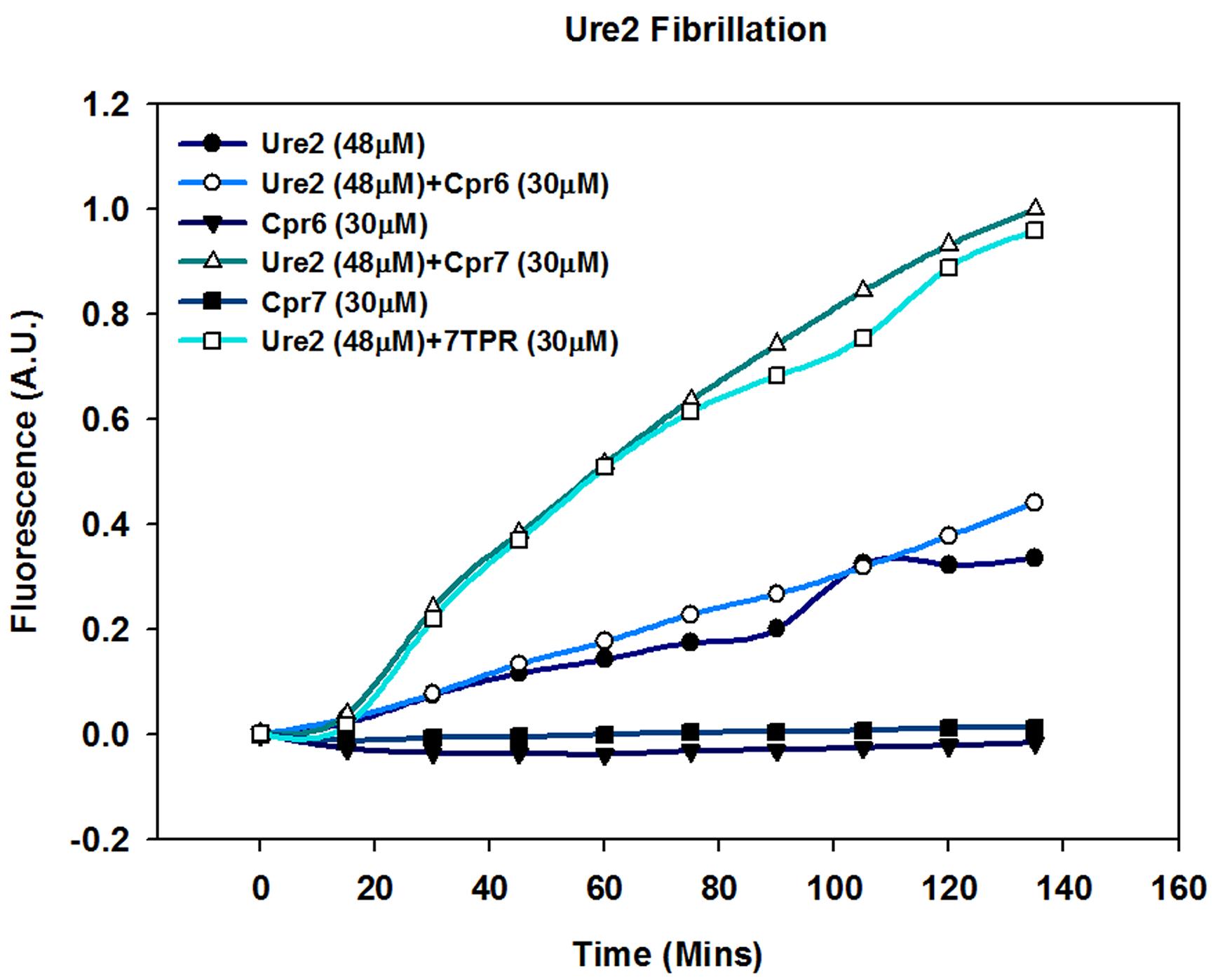 Cpr7 enhances in vitro fibrillization of Ure2.