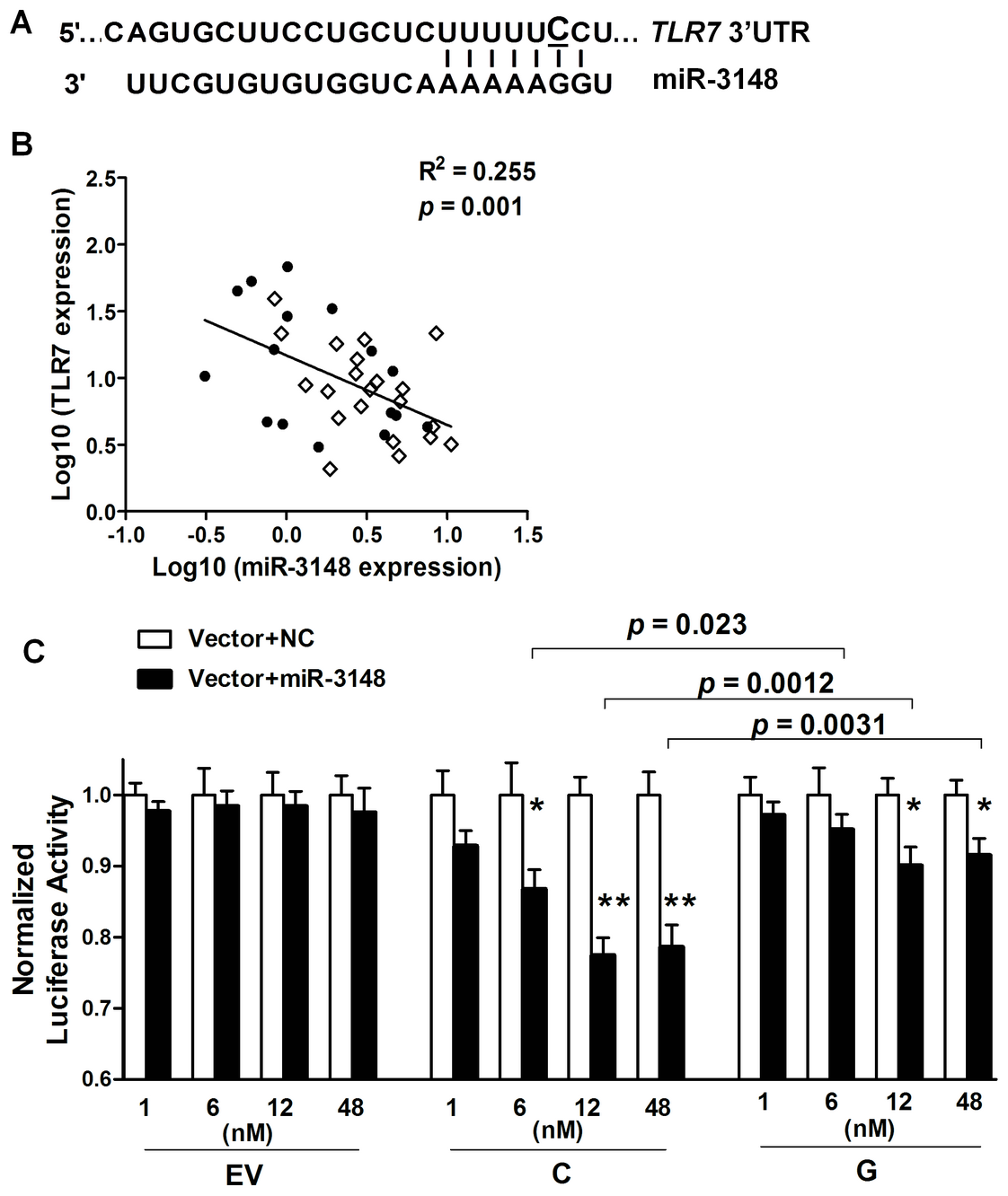 The SLE-risk G allele of rs3853839 displays reduced transcript modulation by miR-3148.