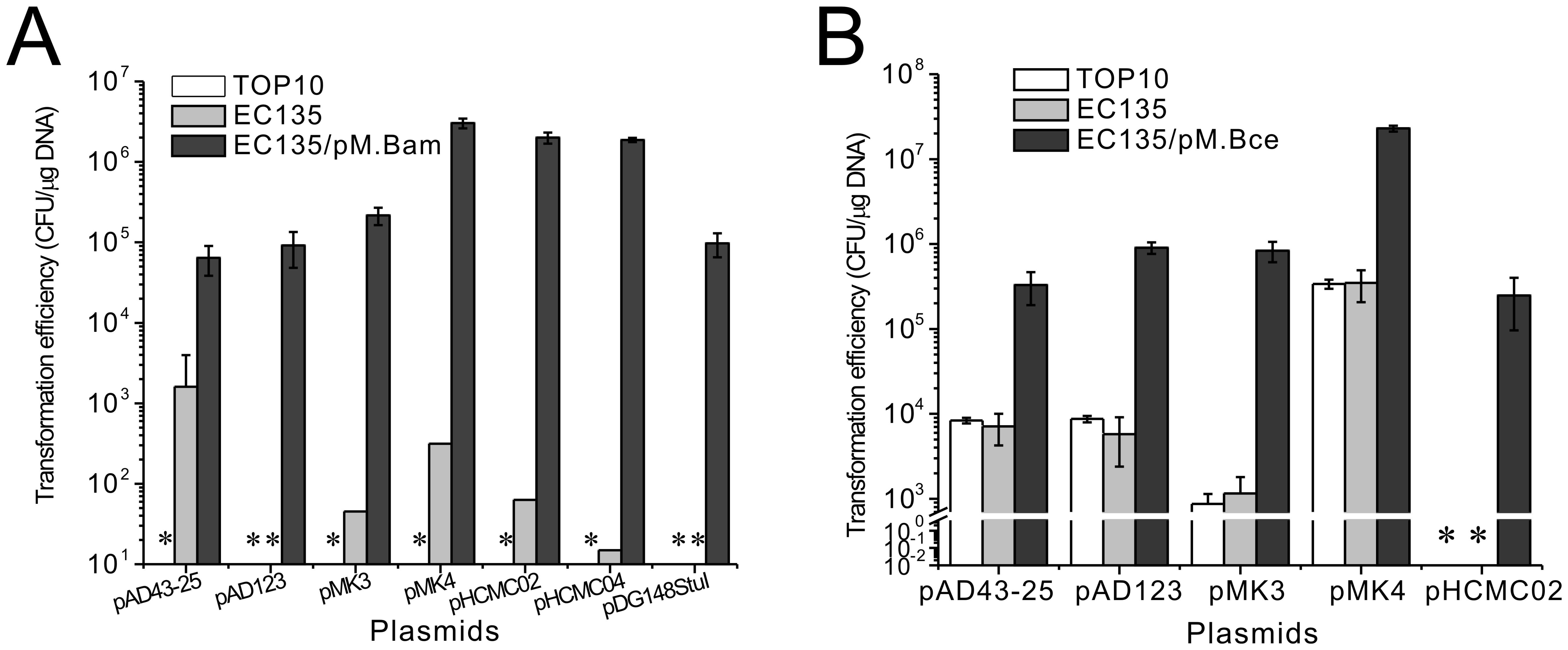 Transformation efficiency of <i>B. amyloliquefaciens</i> TA208 and <i>B. cereus</i> ATCC 10987 with various shuttle plasmids.