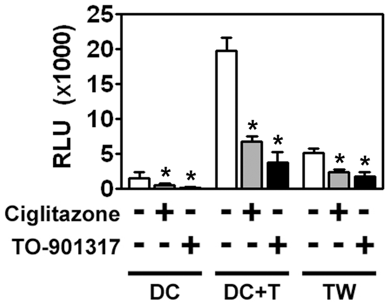 MDDCs are poorly infected with HIV-1 but can mediate <i>trans</i>-infection of T cells.
