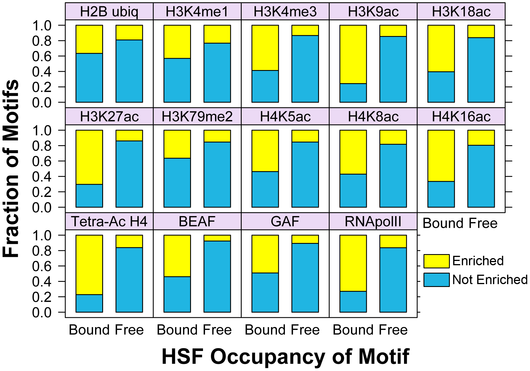 Bound HSE motifs are statistically associated with marks of active chromatin, compared to HSF-free motifs.