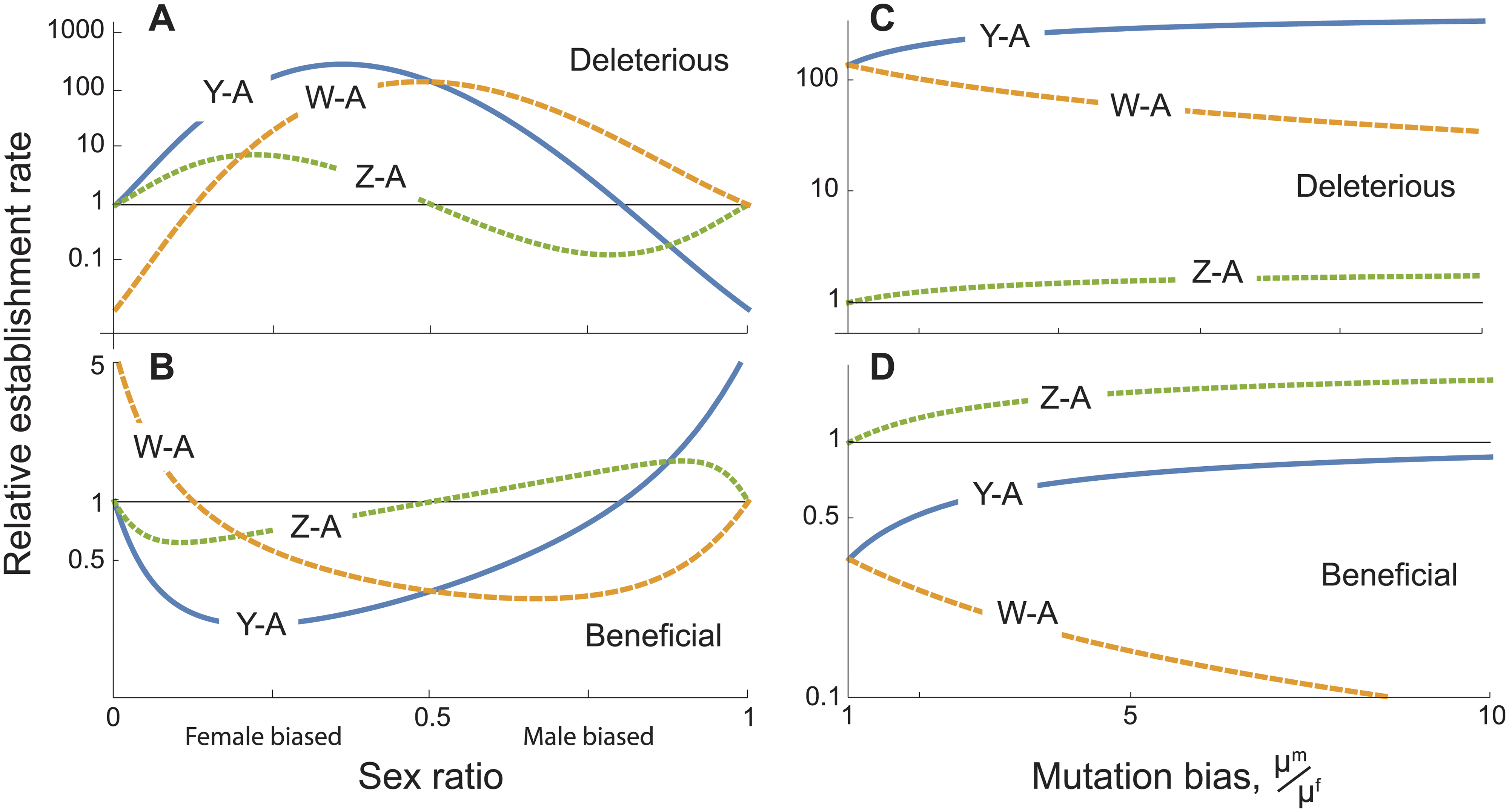 Establishment rates of sex chromosome-autosome fusions under direct selection, relative to the rate for X-A fusions.