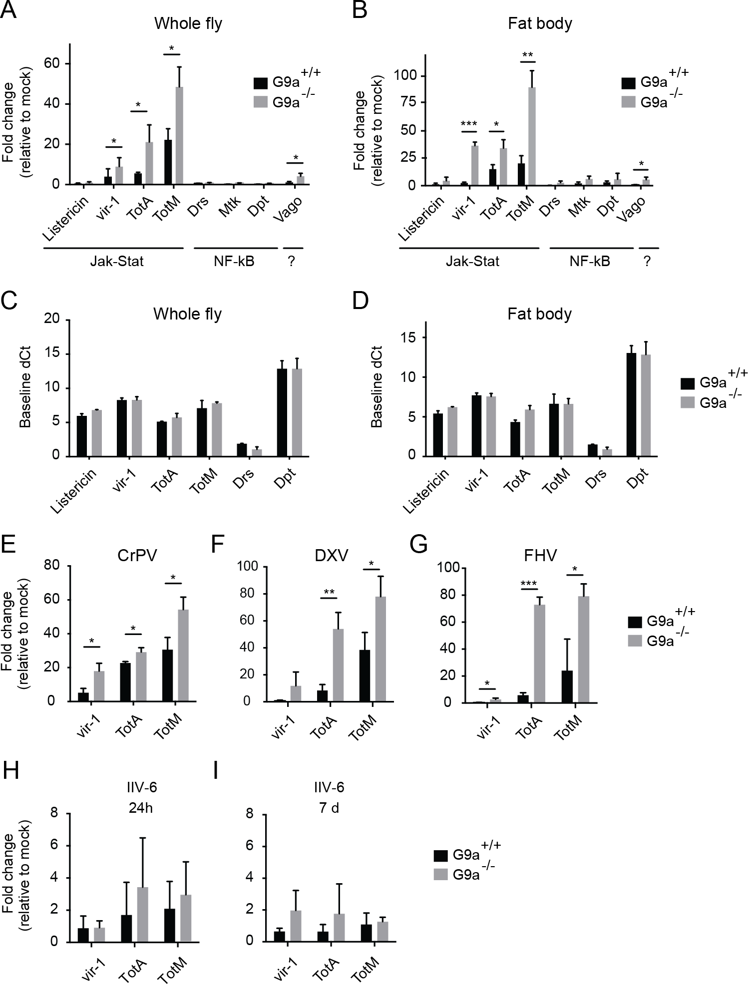 Hyperactivation of the Jak-Stat pathway by virus infection of <i>G9a</i> mutants.
