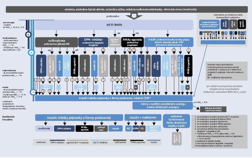 Schéma 2 | Odporúčania SDS 1/2018. Terapeutické cesty, ktoré umožňuje ktoré umožňuje SPC a IO