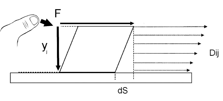 """Závislost mezi tečným napětím a smykovou rychlostí u ne-newtonovských látek není lineární - zdánlivá viskozita. Schéma deformace smykového namáhání určité části """"kontinua"""" palpované tkáně v deformačním střižném poli (obdoba palpační terapie, působící na pojivovou tkáň): F - deformující síla, yj - různá hloubka palpované tkáně, dS - okamžitá změna (deformace) části kontinua, yij - okamžité rychlosti smykové vlny (tečení) (upraveno z 6)."""