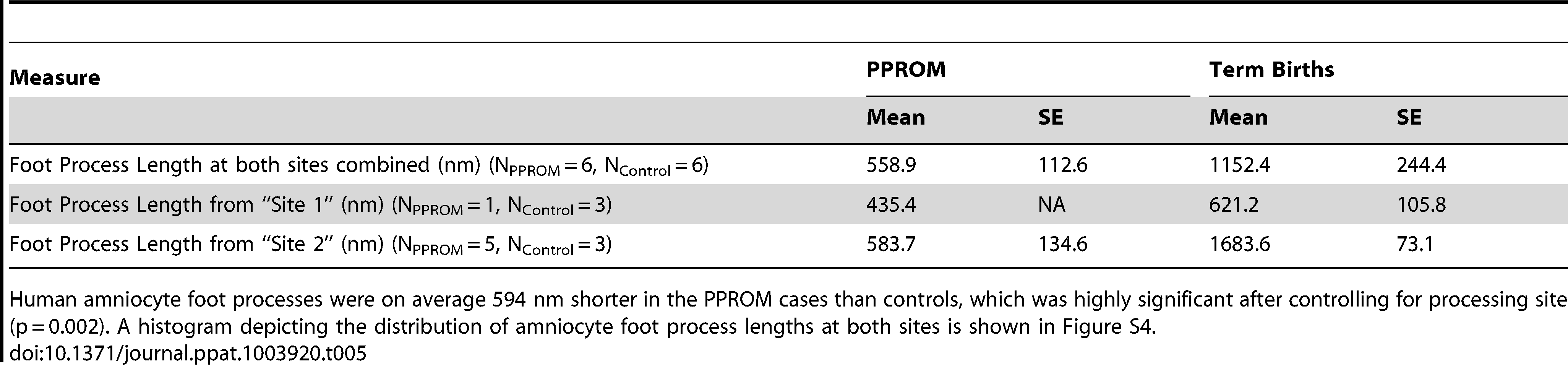 Amniocyte foot process length.
