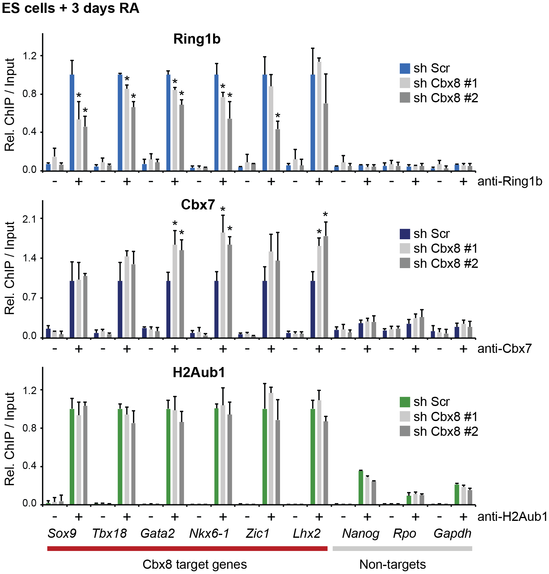Loss of Cbx8 is partially compensated by Cbx7.