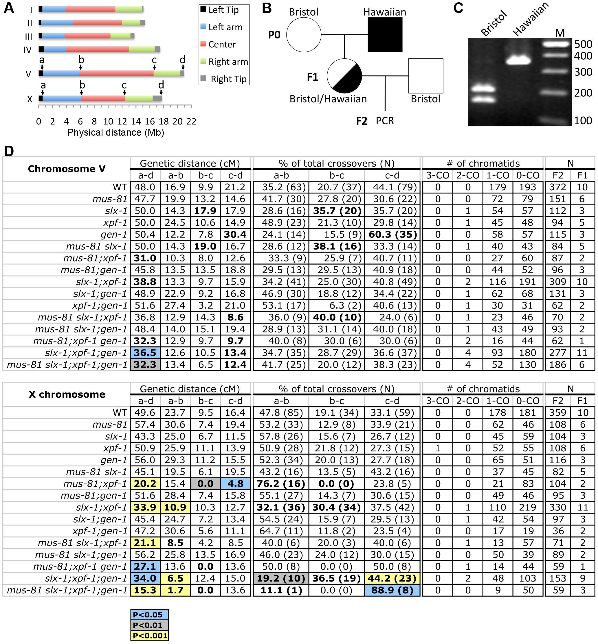 Roles for the structure-specific nucleases in regulating crossover frequency and distribution.