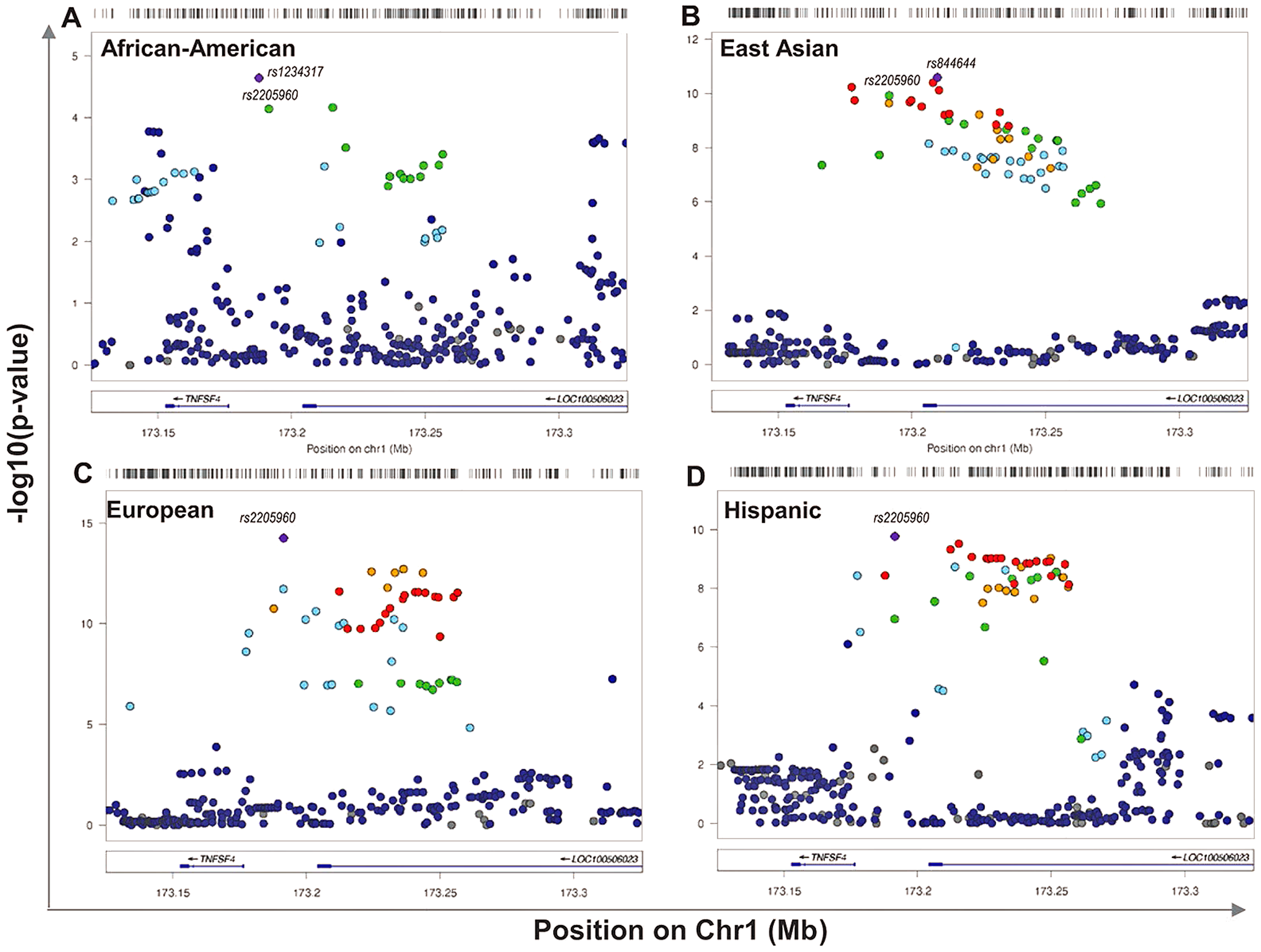 Single marker association at <i>TNFSF4</i> locus in <i>A</i>. East Asian, <i>B</i>. European, <i>C</i>. Hispanic, <i>D</i>. African-American SLE-control populations.