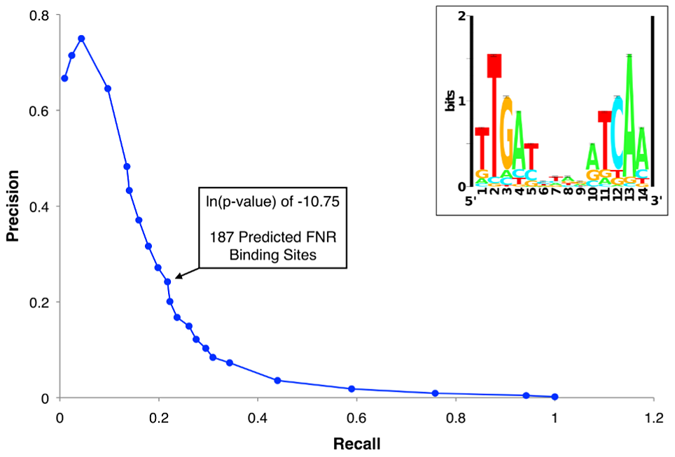 Precision-recall curve used to determine the prediction threshold of FNR binding sites and updated FNR PWM.