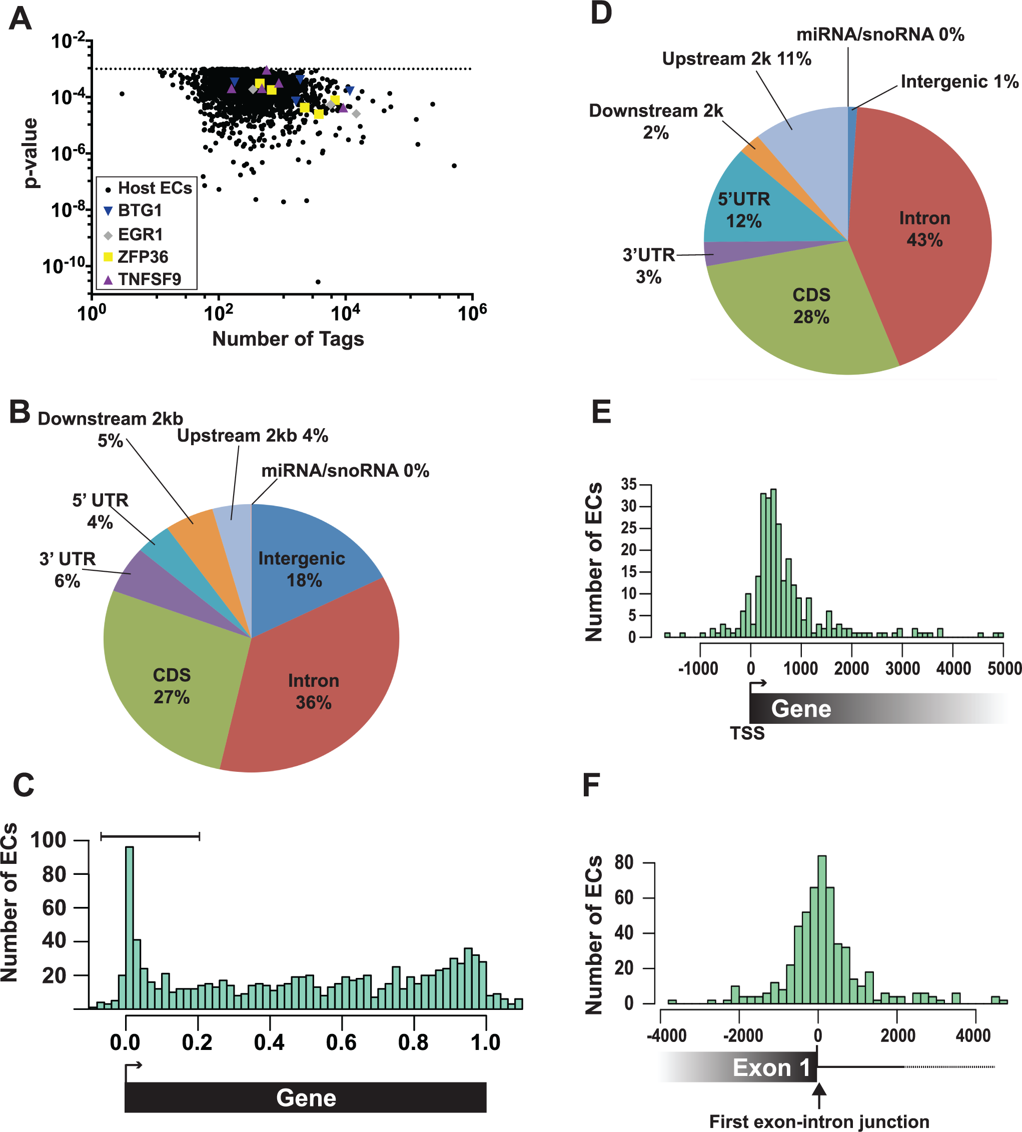 Identification and characterization of enriched clusters mapping to the human genome.