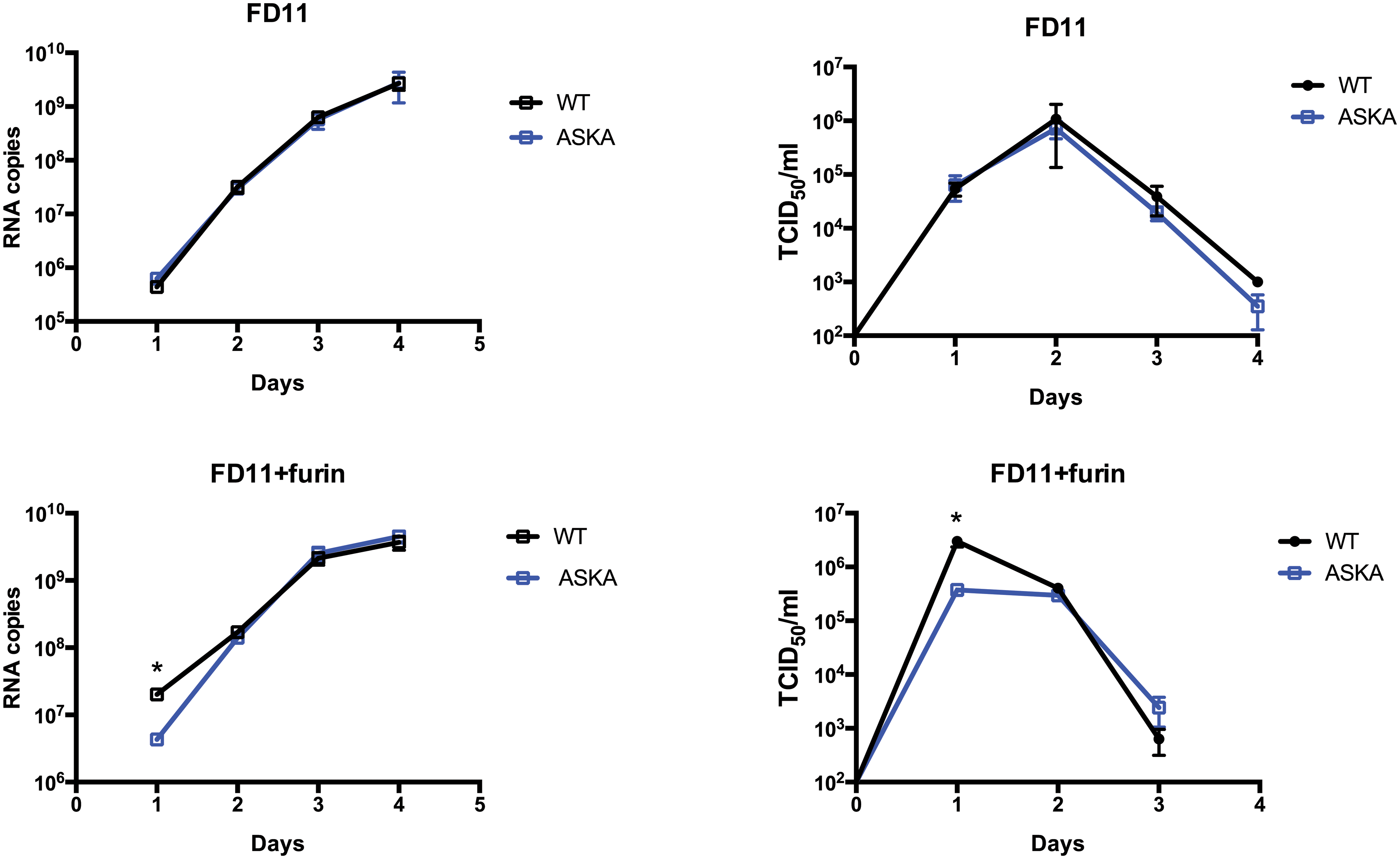 Furin effect on CCHFV-WT and-ASKA growth.