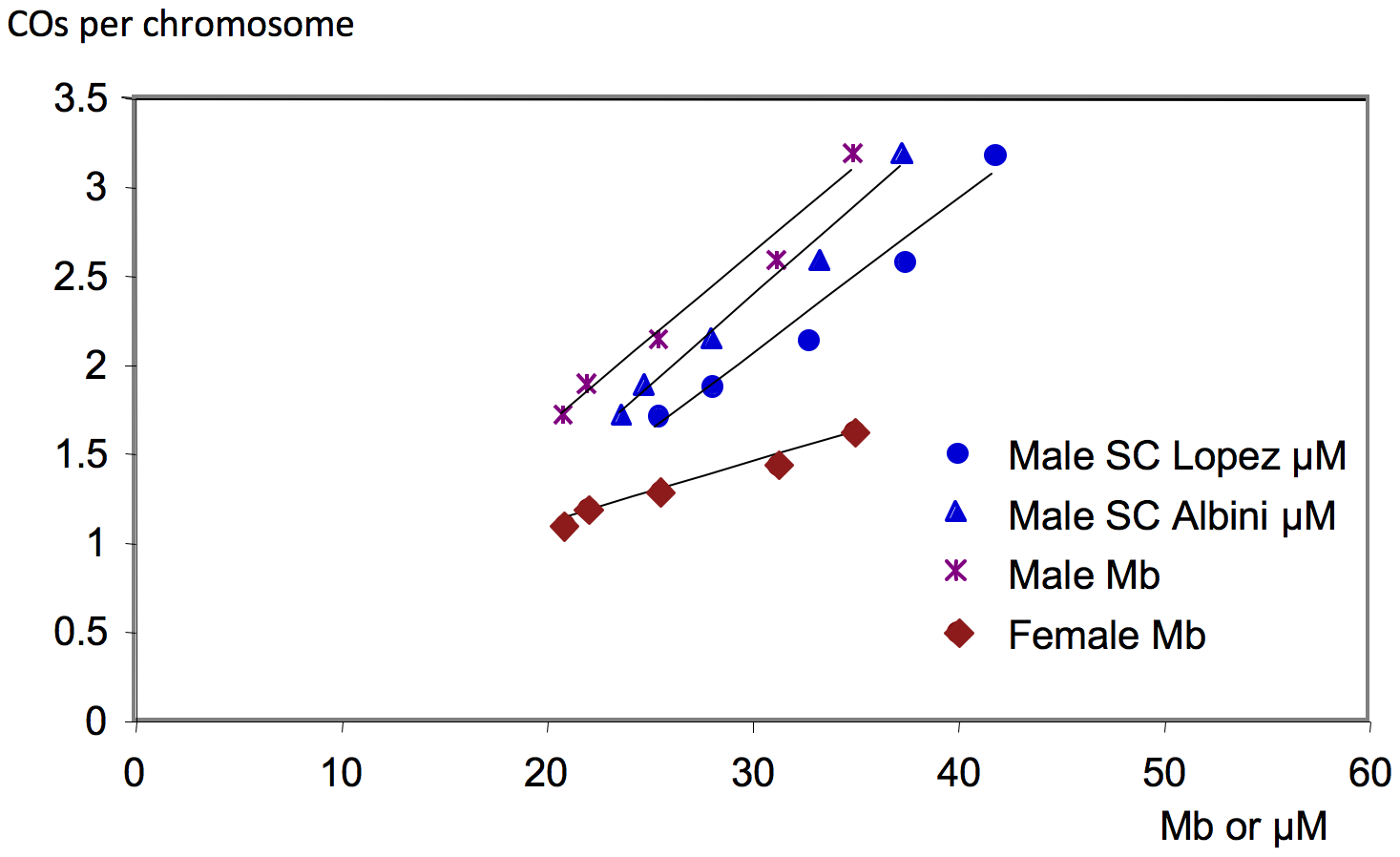 Correlation between the number of COs per chromosome and the physical size of chromosomes.