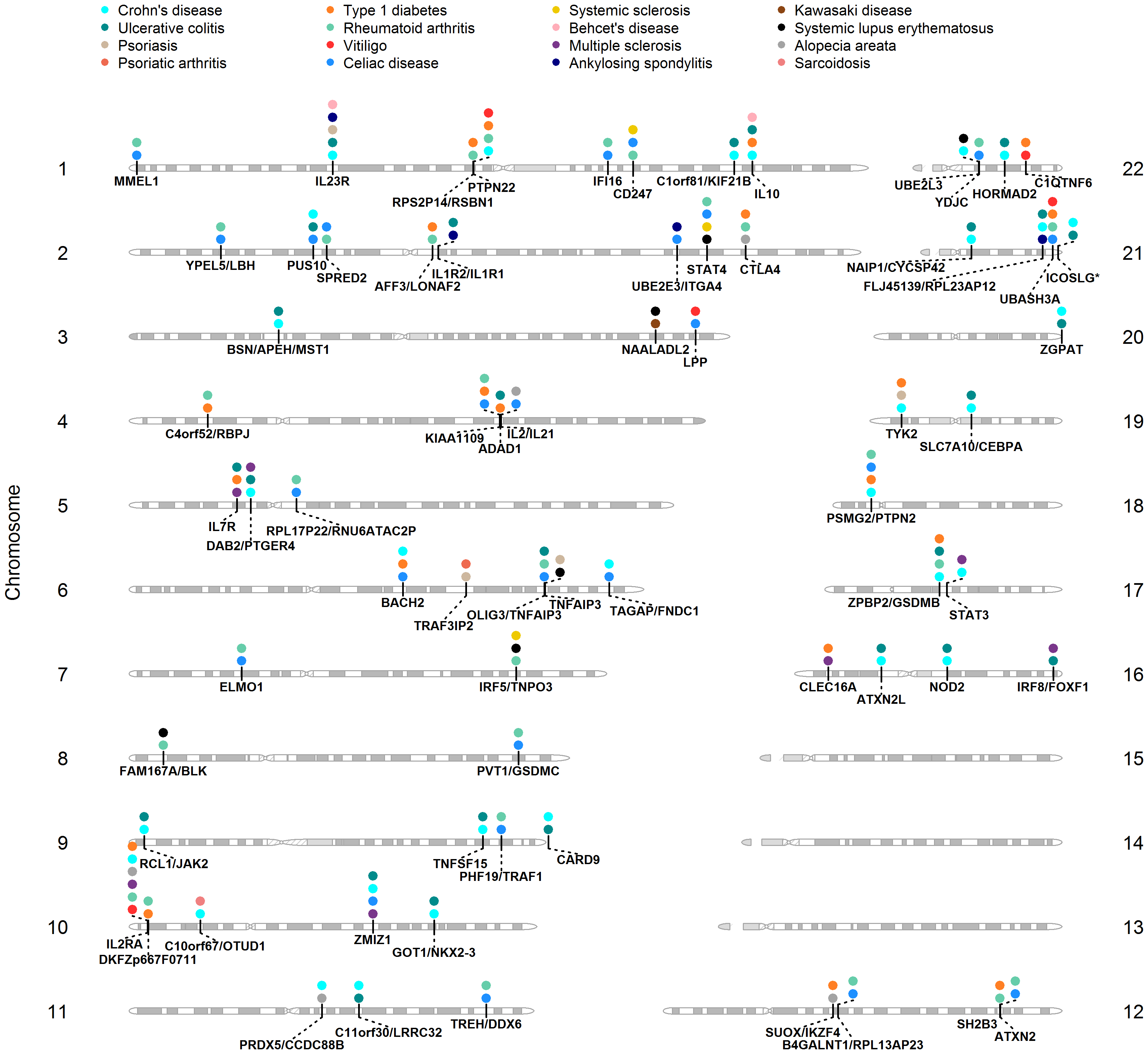 Shared <i>loci</i> between GWAS of ADs.