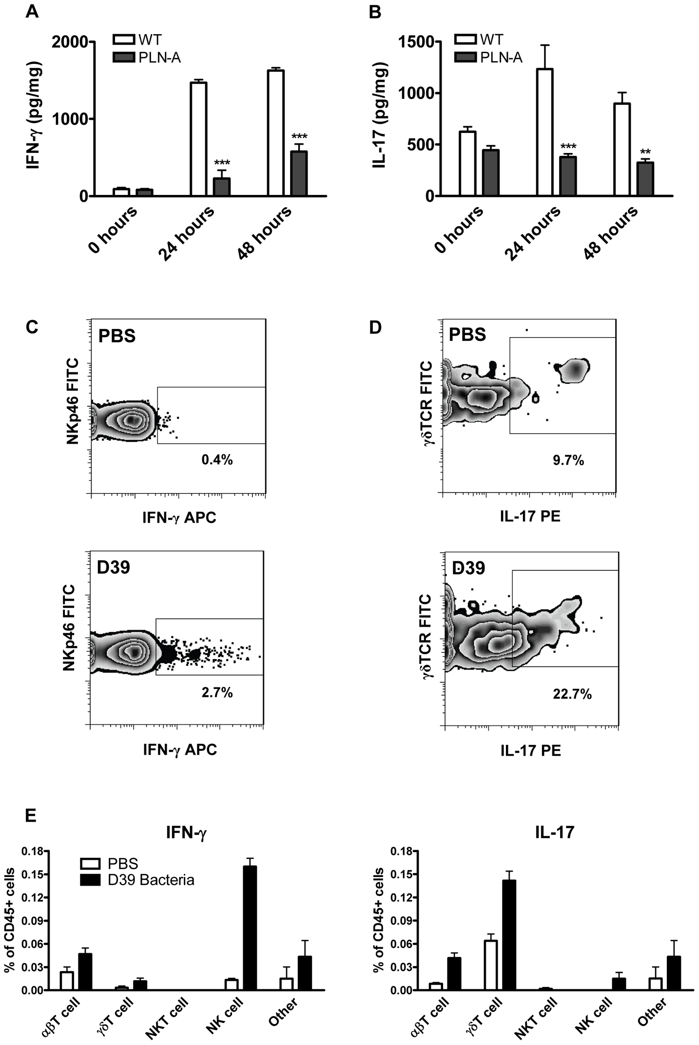PLY is required for IFN-γ and IL-17A induction following infection with <i>S. pneumoniae</i>.