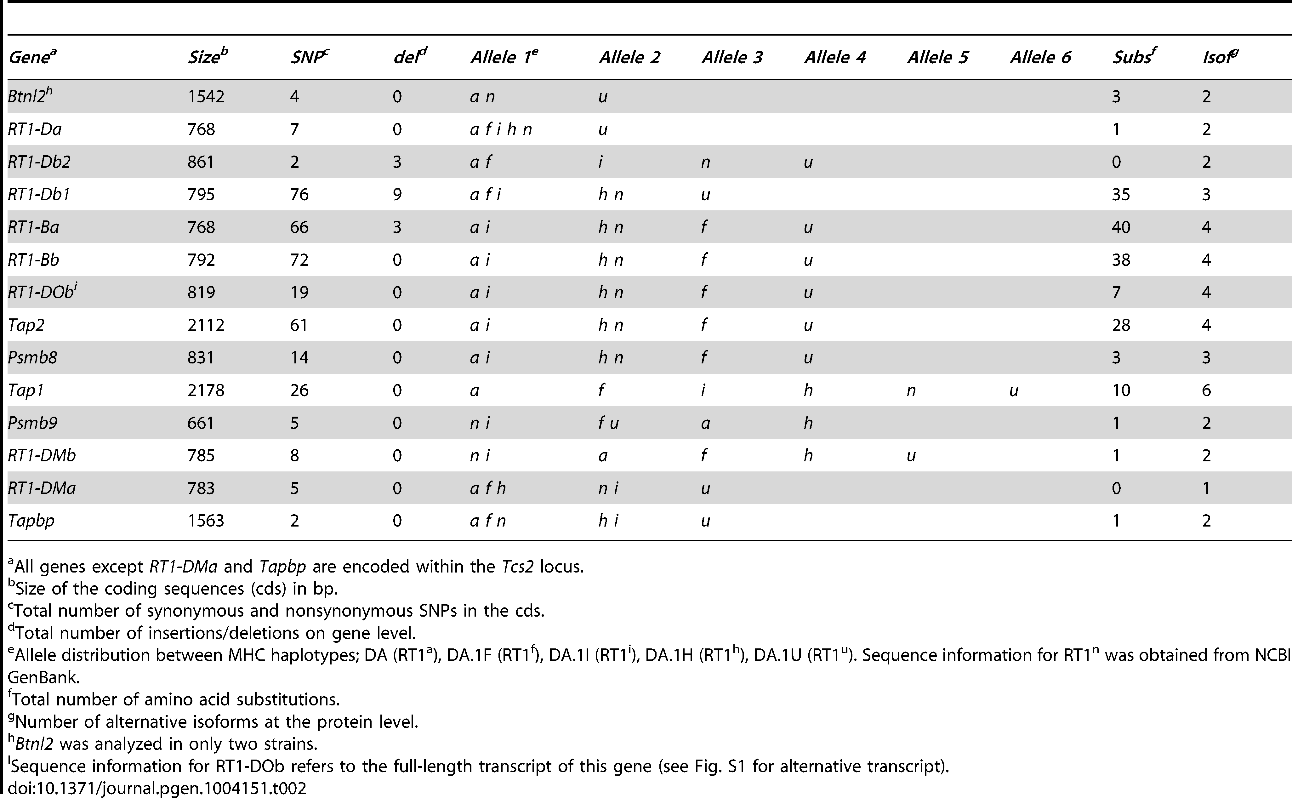 Sequence variants and allele distribution of genes in six rat MHC haplotypes.