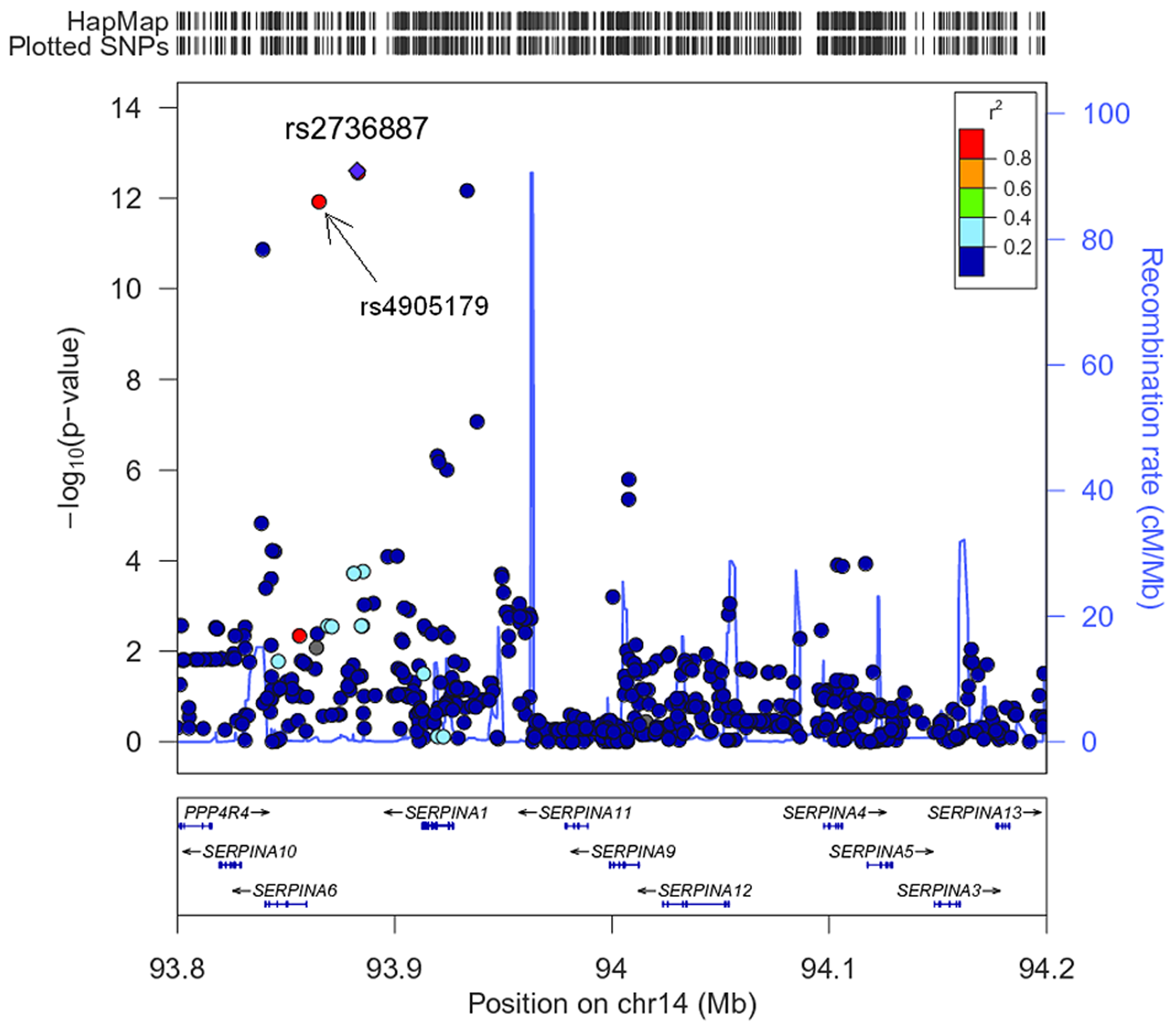 Regional plot for the <i>SERPINA</i> gene cluster (93.8–94.2 Mb on chromosome 14q32.13, reference panel: NCBI build 36.3).