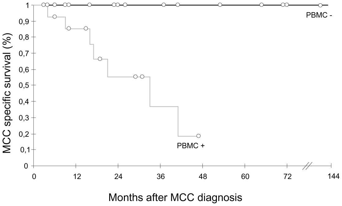 Kaplan Meier analysis of overall survival relative to MCPyV detection in PBMC.