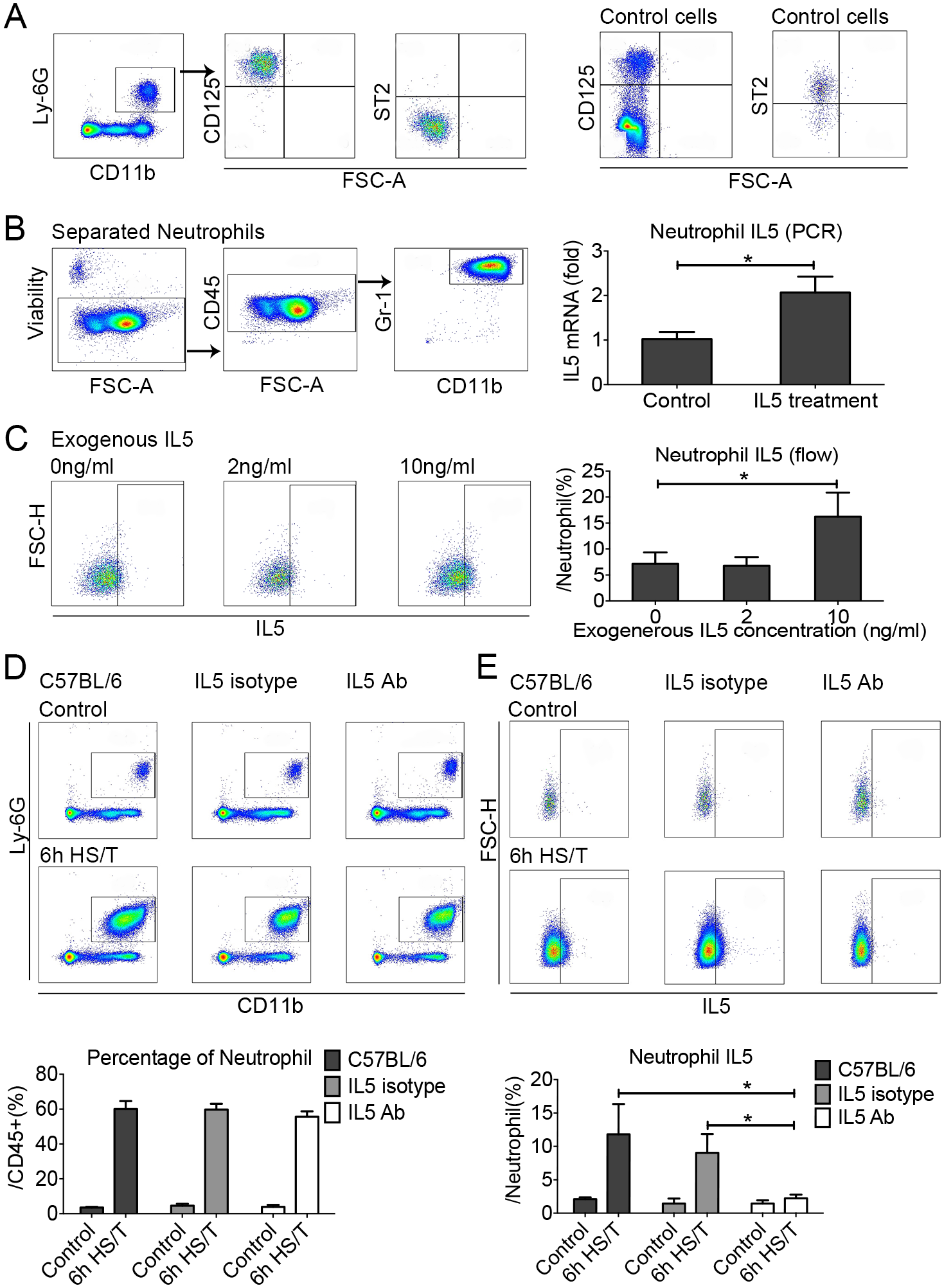 The effects of exogenous recombinant interleukin (IL) 5 or IL5 neutralization on neutrophil IL5 expression in the lungs of C57BL/6 mice after resuscitated hemorrhagic shock and tissue trauma (HS/T).