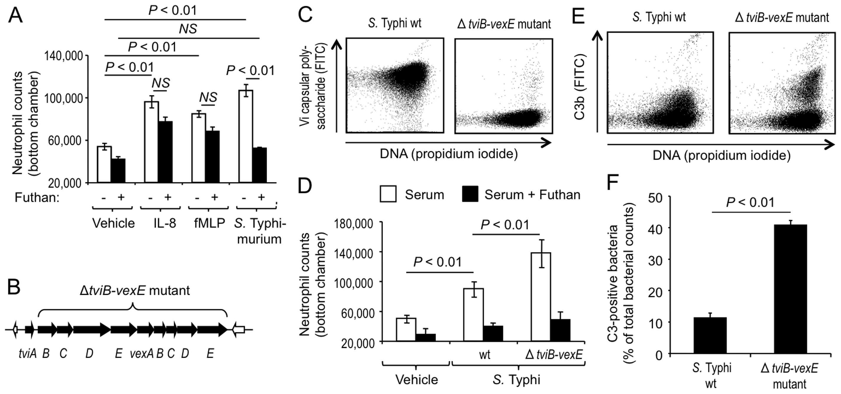 The Vi capsular polysaccharide inhibits complement-dependent chemotaxis <i>in vitro</i>.
