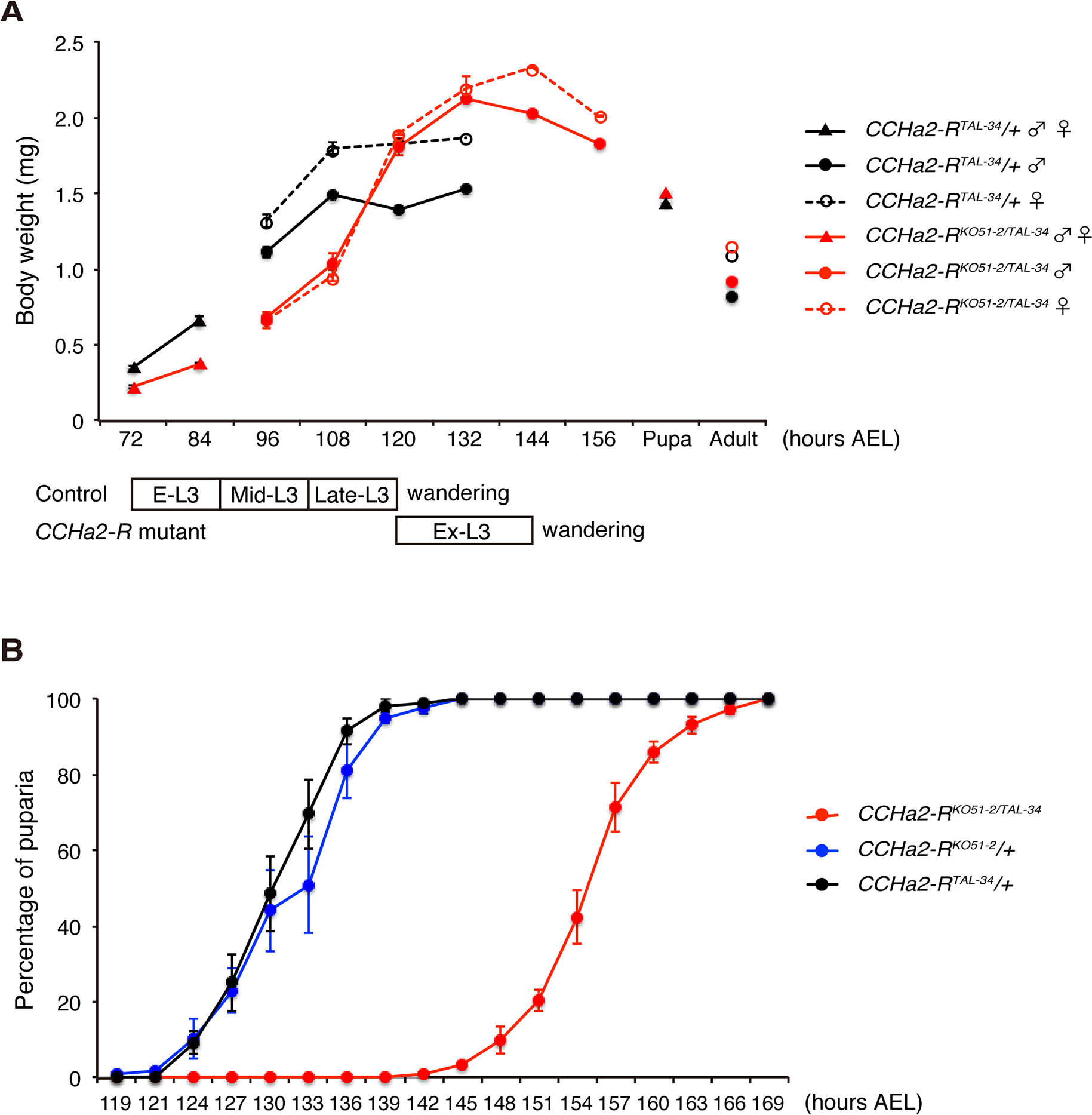 <i>CCHa2-R</i> mutants show growth defects and developmental delay.