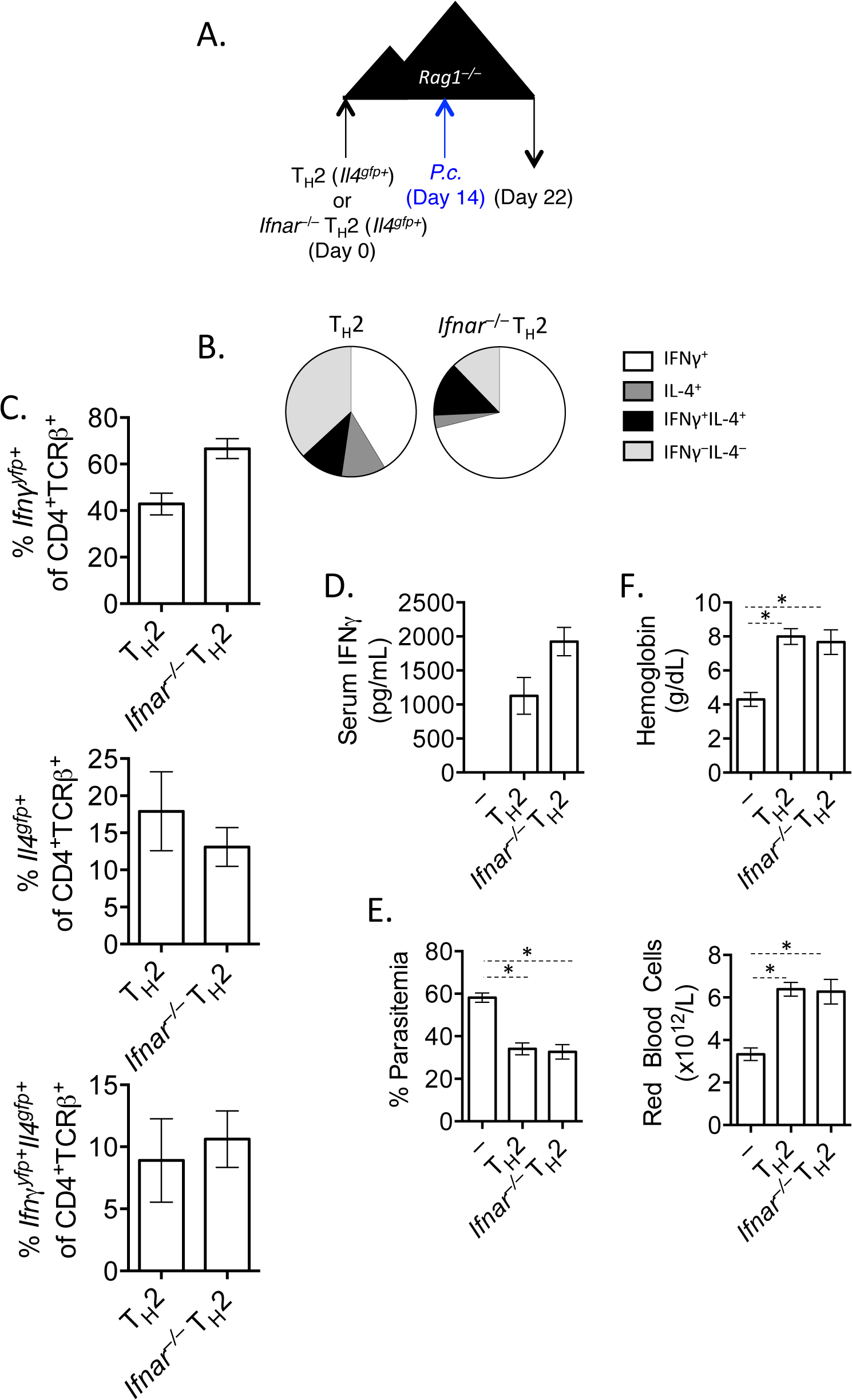 IFNγ production by Th2 cells does not depend of type I IFN.