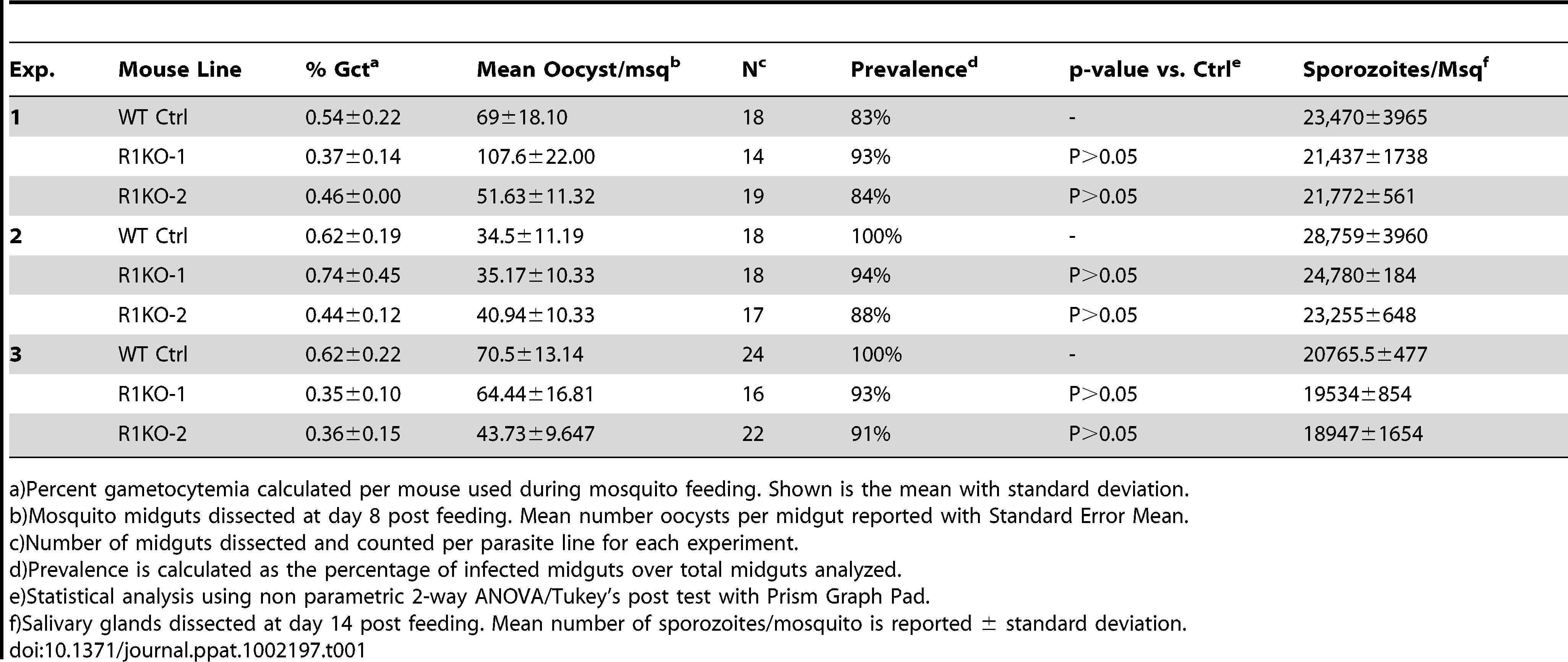 <i>PyRom1(-)</i> parasites progress normally through the mosquito vector.