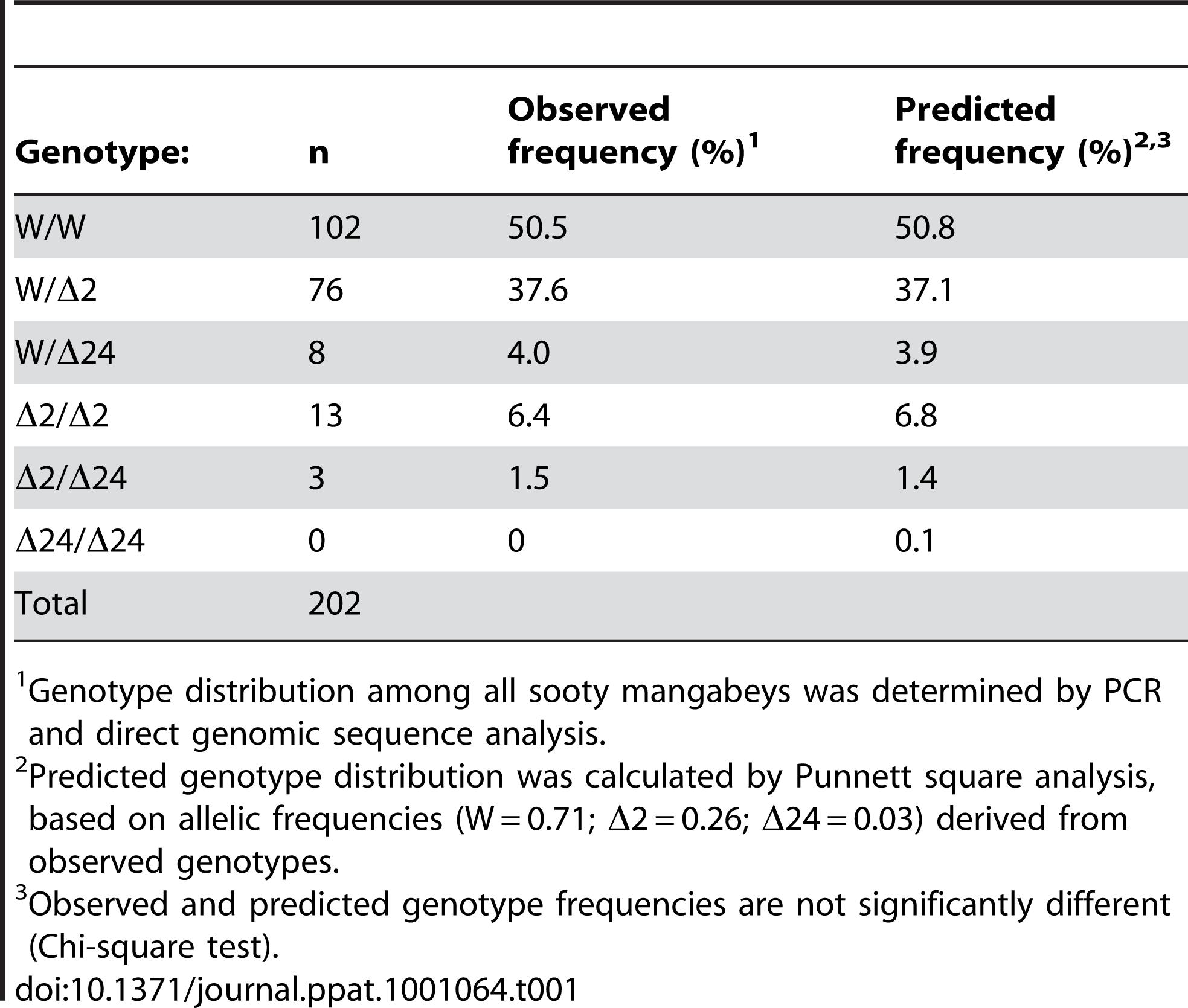 Genotypic frequencies in Sooty Mangabeys at YNPRC.