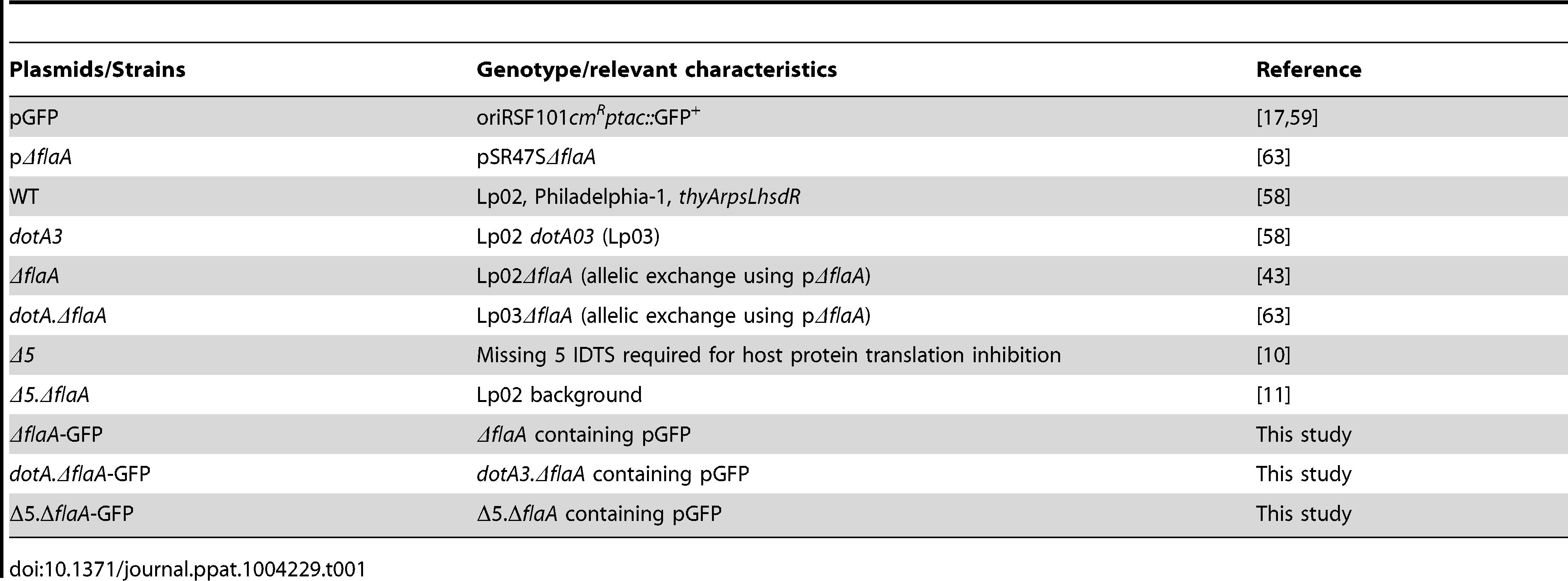 Plasmids and strains used in this study.