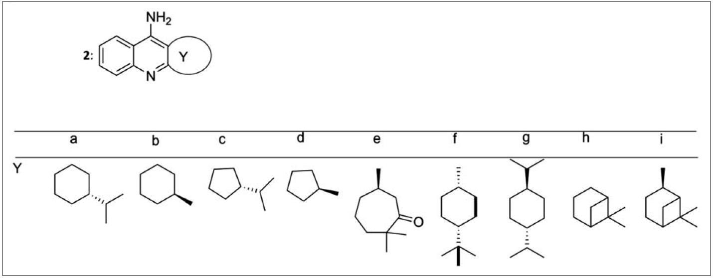 Monotakriny připravené z chirálních terpenických cyklanonů