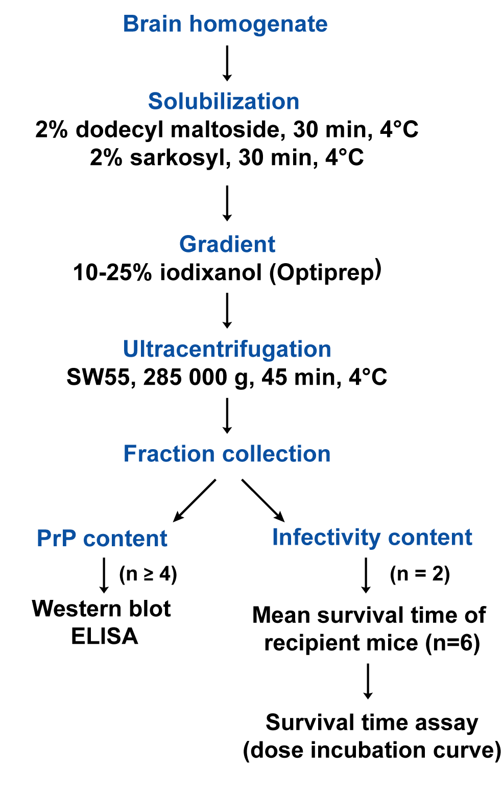 Flow diagram describing the sedimentation velocity protocol and the analysis of prion particles infectivity with regard to PrP<sup>Sc</sup> content.
