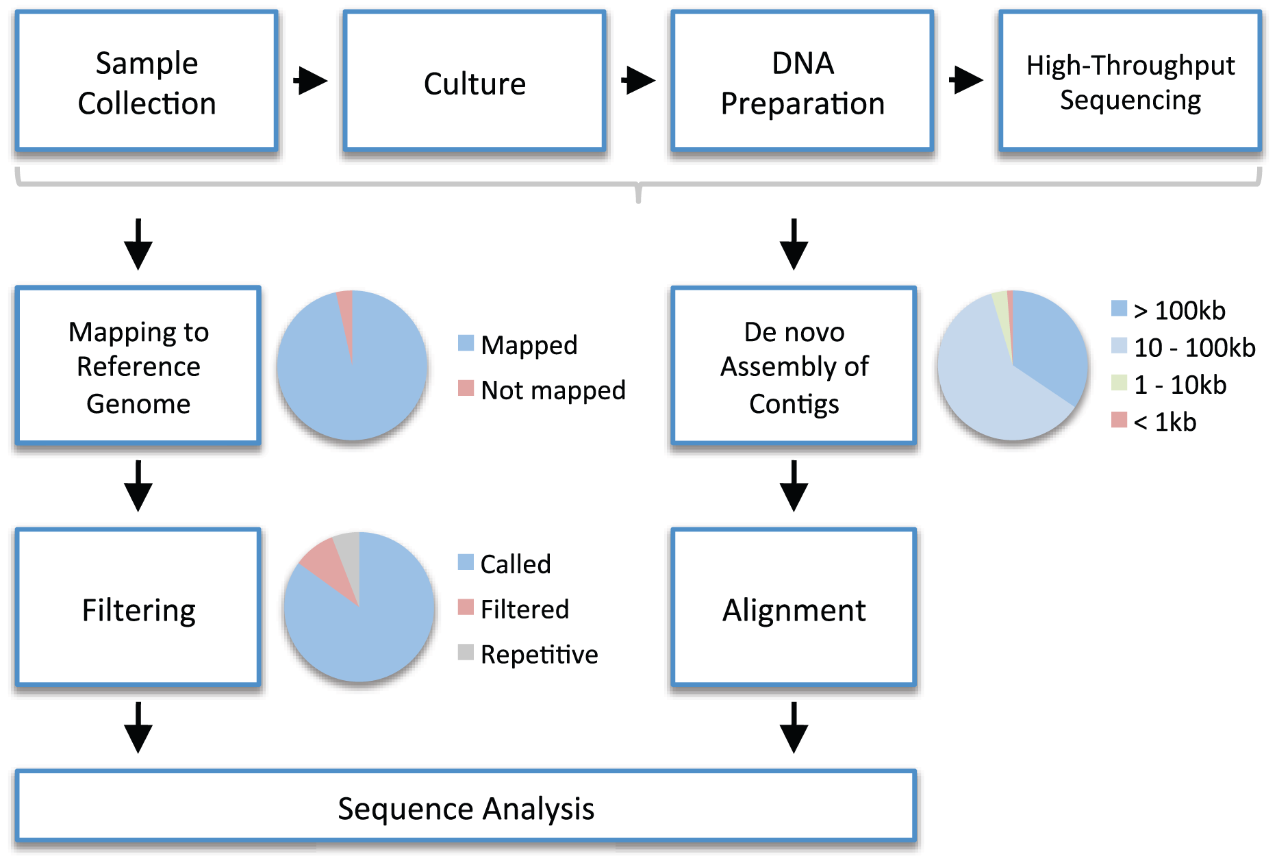 An example workflow for high-throughput whole genome sequencing in bacteria.