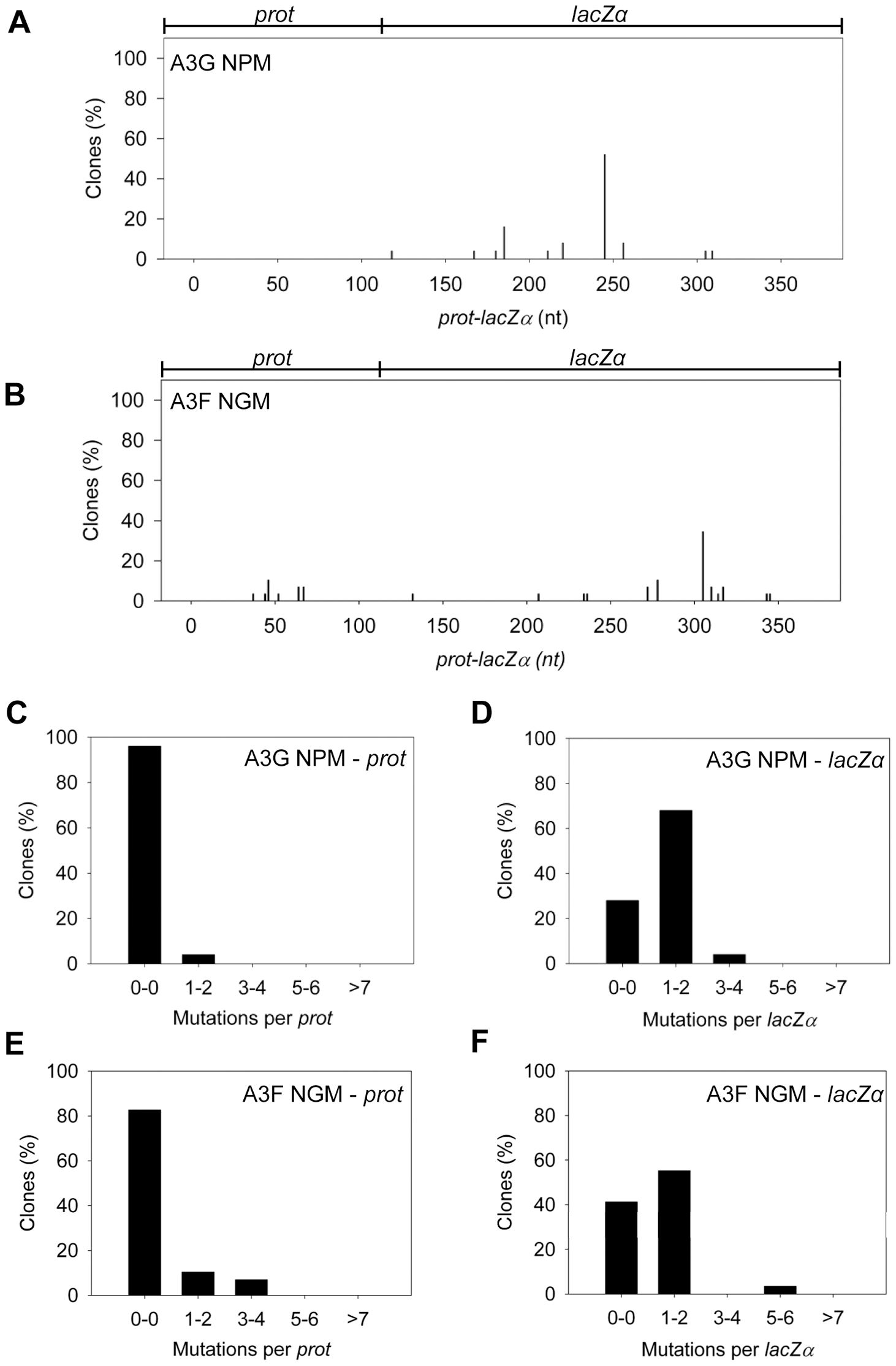 Cytosine deamination-induced mutagenesis by mutant A3G and A3F in a model HIV replication system.