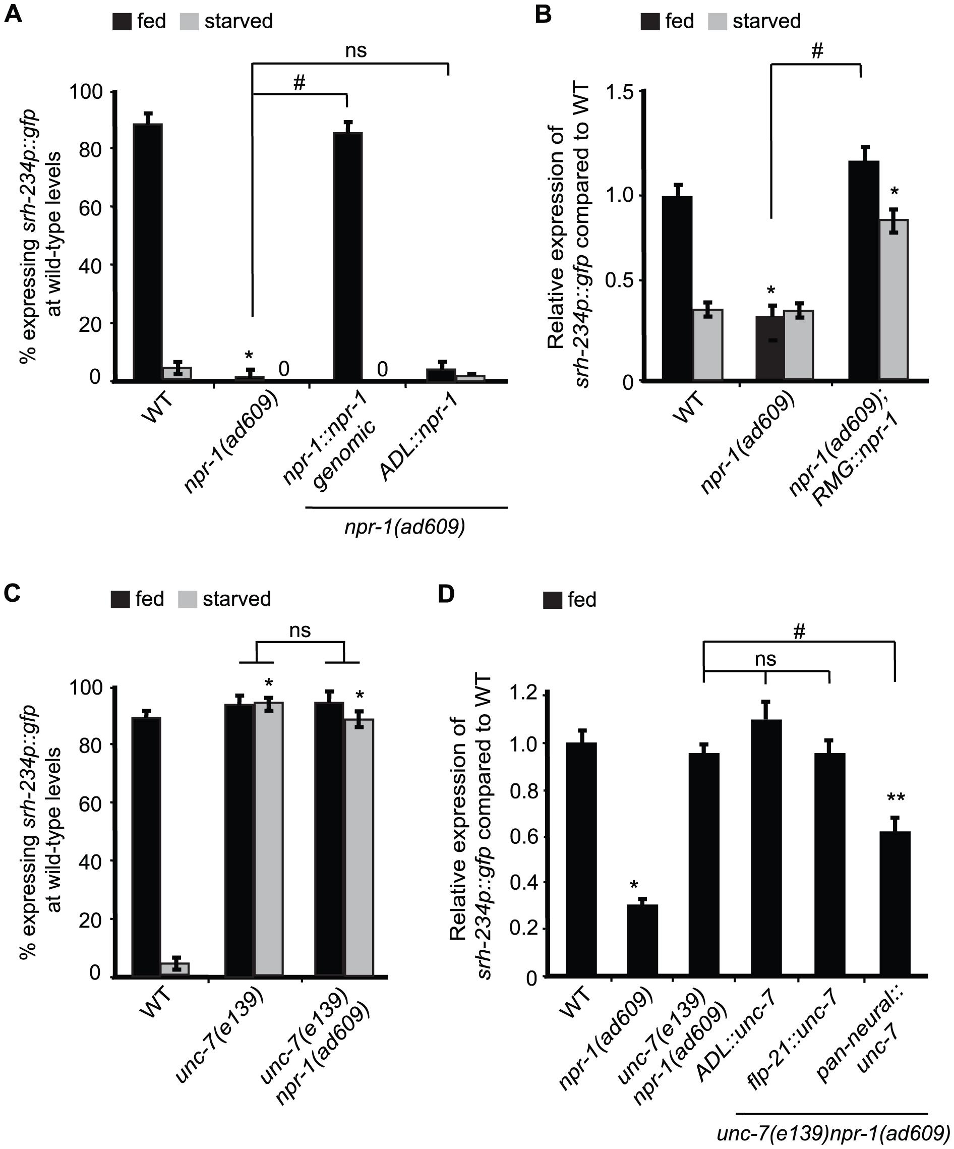 Reducing <i>npr-1</i> activity in RMG promotes <i>srh-234</i> expression levels.