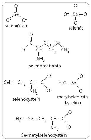 Selenové zlúčeniny používané pre dietetické, experimentálne a klinické štúdie.