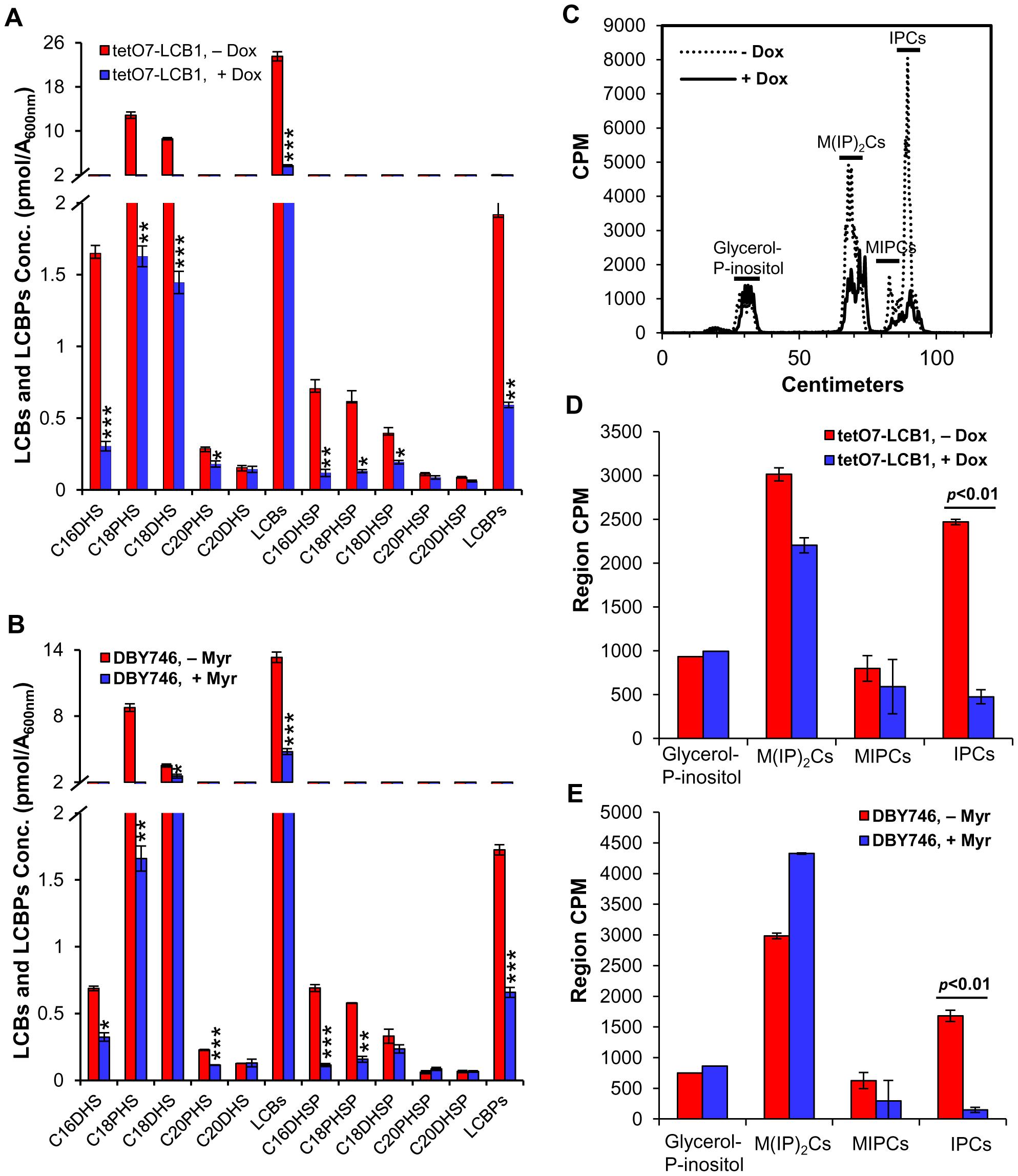 Myriocin or Dox treatment reduces sphingolipid levels.
