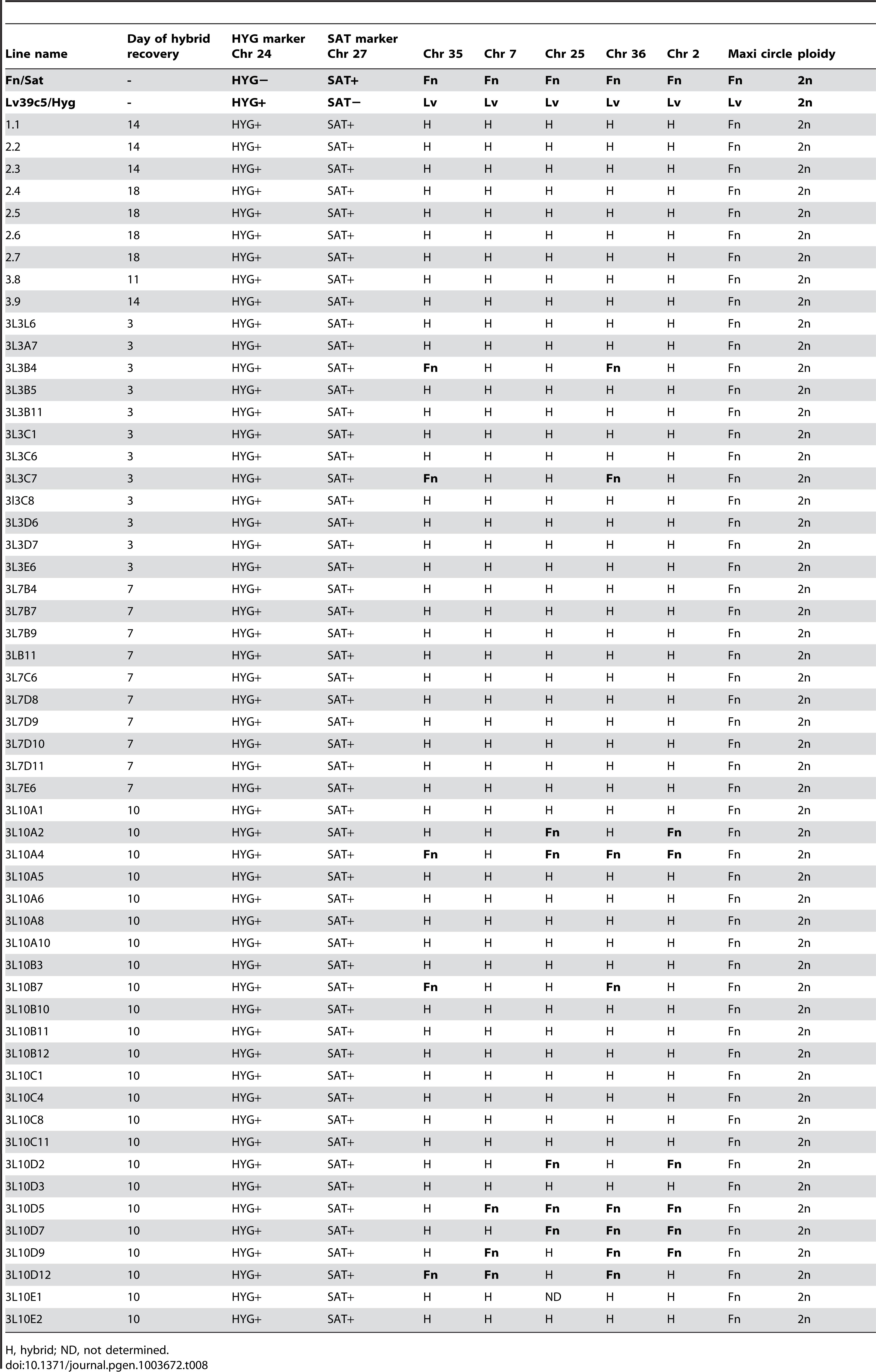 Summary of hybrid genotypes generated in <i>Lu. Longipalpis</i>.
