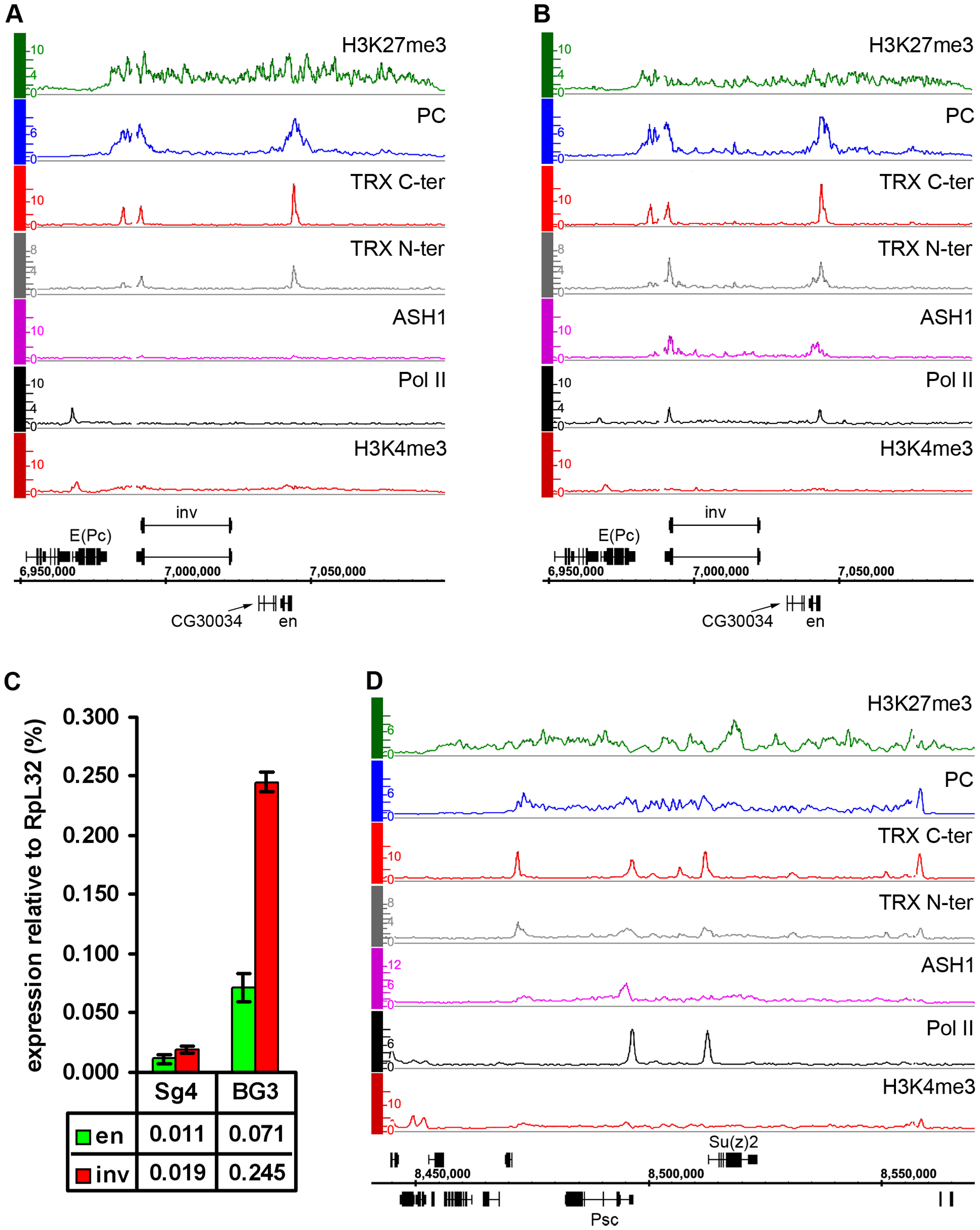 Examples of balanced chromatin state.