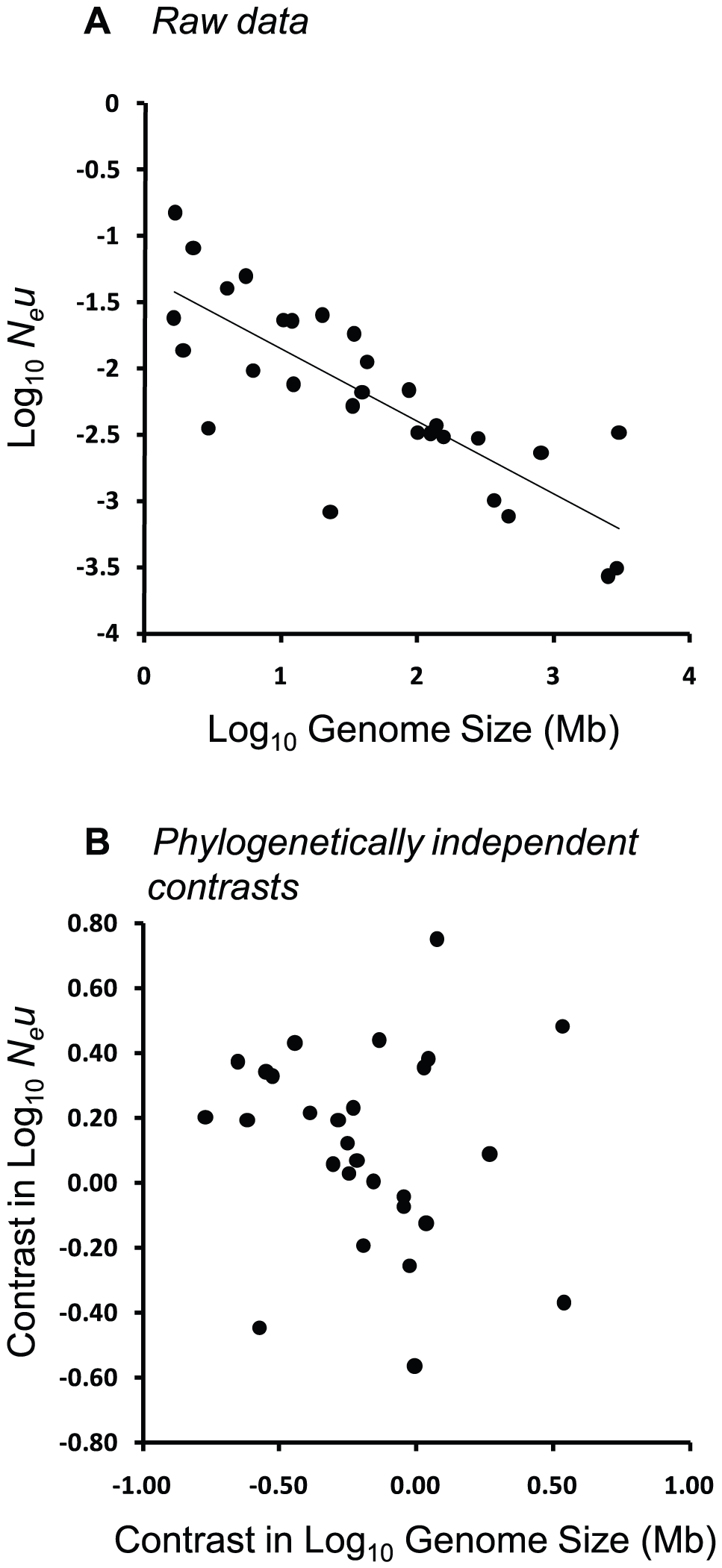 """Relationship between <i>N<sub>e</sub>u</i> and genome size across 22 eukaryotic and 7 prokaryotic species from the dataset of Lynch & Conery <em class=""""ref"""">[<b>7</b>]</em>."""