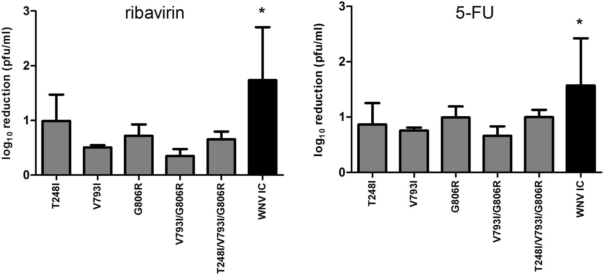 Decreased mutagen susceptibility of WNV replication complex mutants.