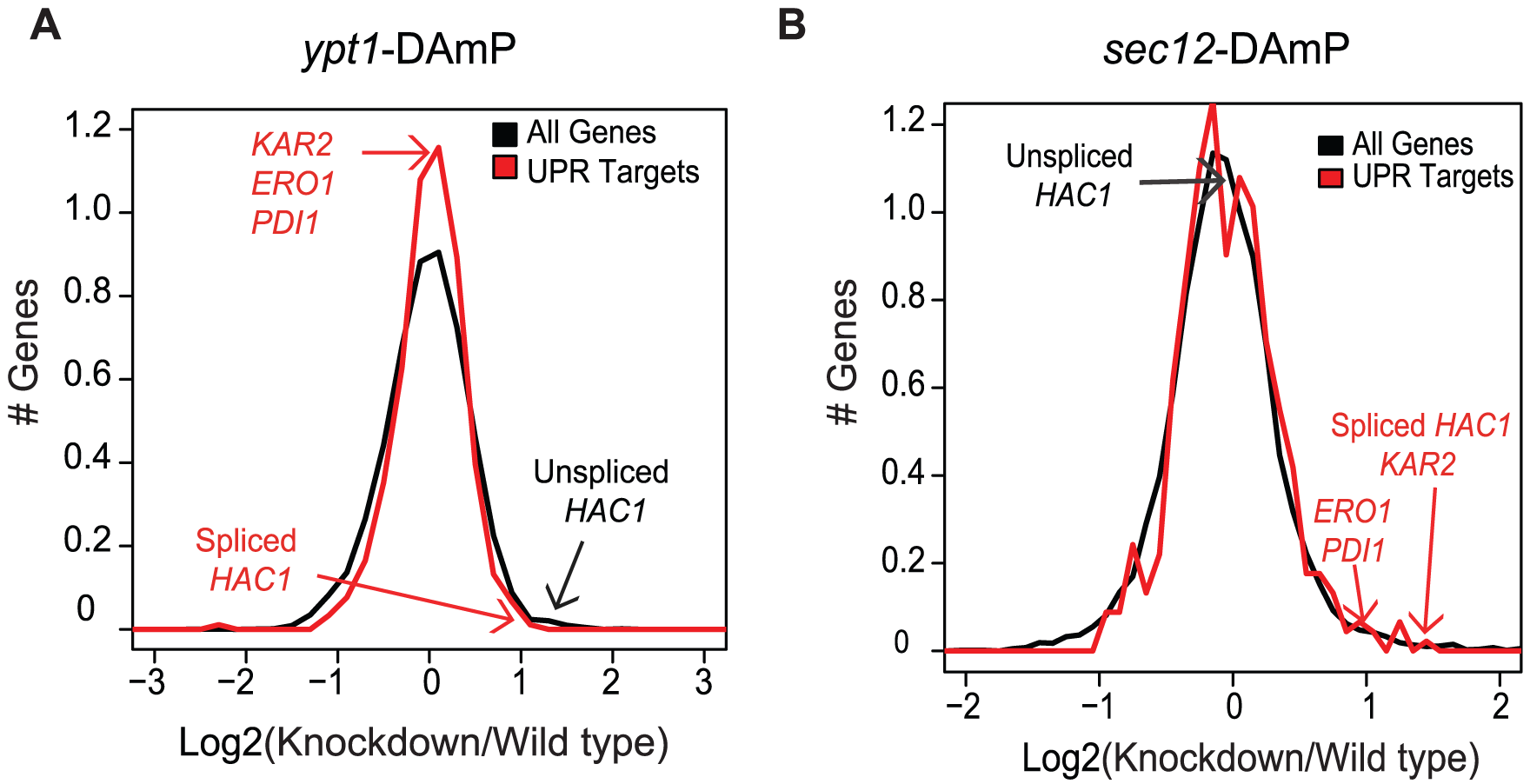 Ypt1 knockdown affects <i>HAC1</i> <b>splicing and expression.</b>