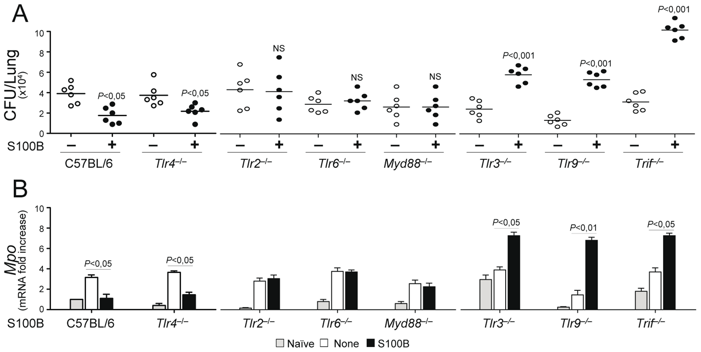 S100B activity <i>in vivo</i> is contingent upon TLR signaling.