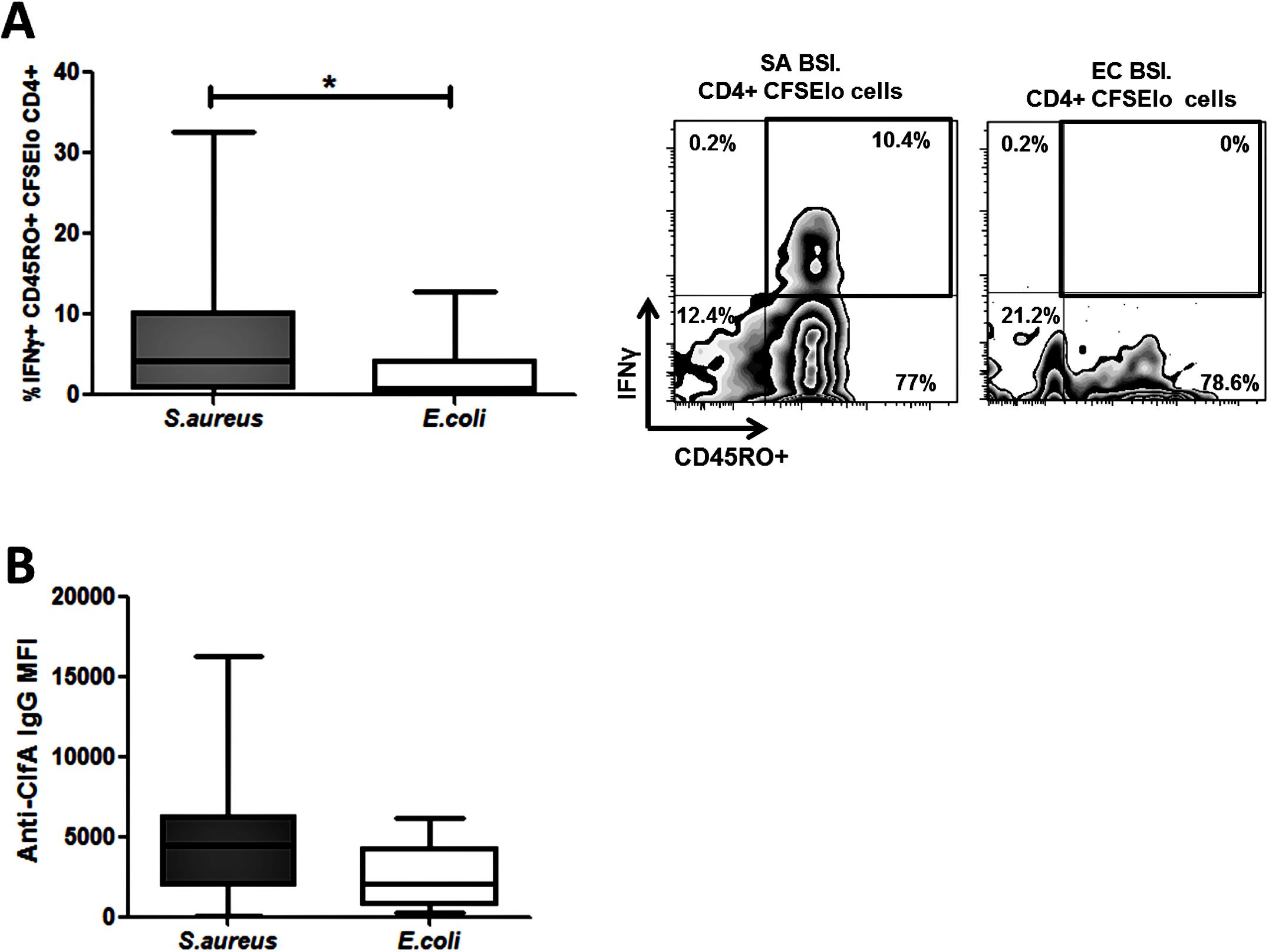 Human <i>S</i>. <i>aureus</i> bloodstream infection induces <i>S</i>. <i>aureus</i> antigen-specific effector memory Th1 cells and anti-ClfA antibodies.