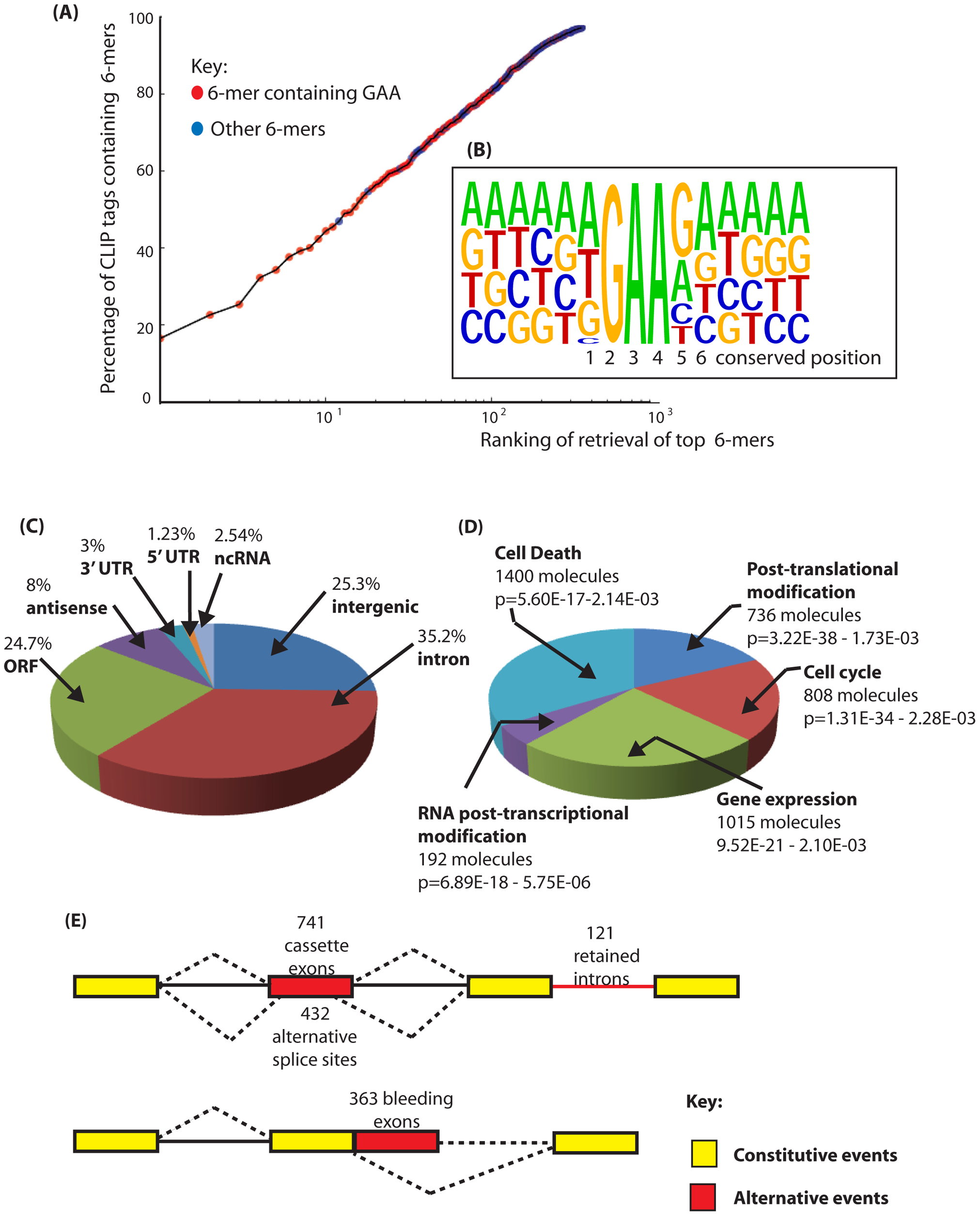 Identification of binding sites for Tra2β in the mouse transcriptome.