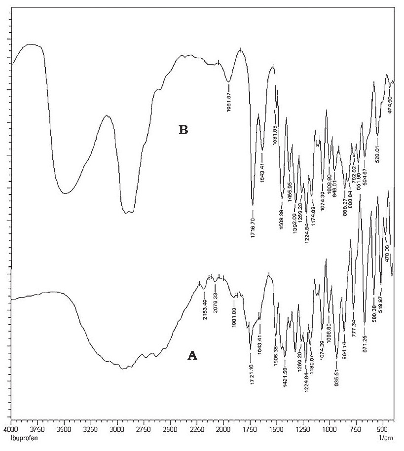 Fig. 1. FTIR spectra of IBN (A) and physical mixture (B)