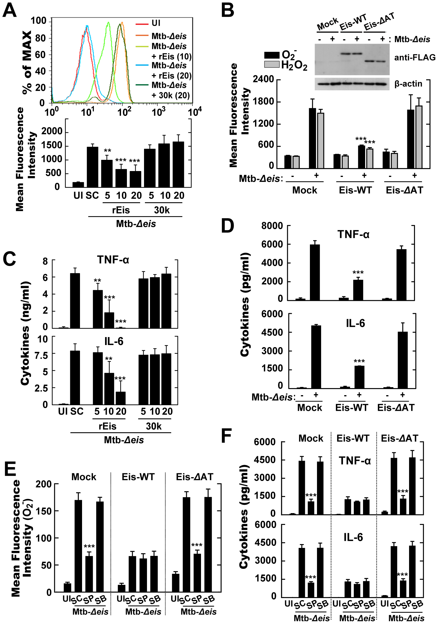 Eis modulates ROS release and proinflammatory cytokine production through its <i>N</i>-acetyltransferase domain.