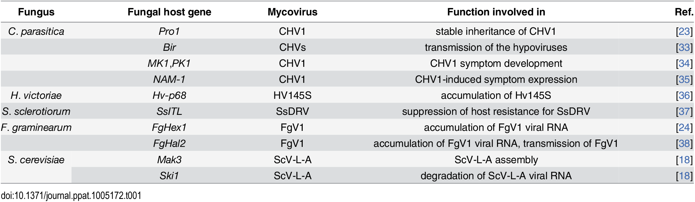 Host genes involved in interactions between mycoviruses and host fungi.