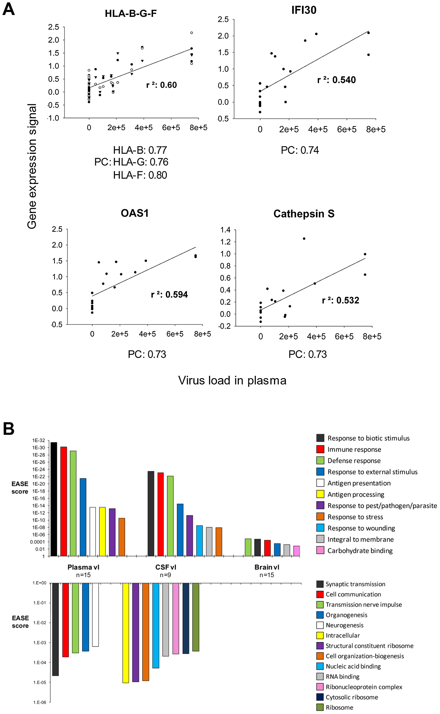 Global gene expression changes in HAND brain correlated the most with plasma and less with CSF and brain virus load.
