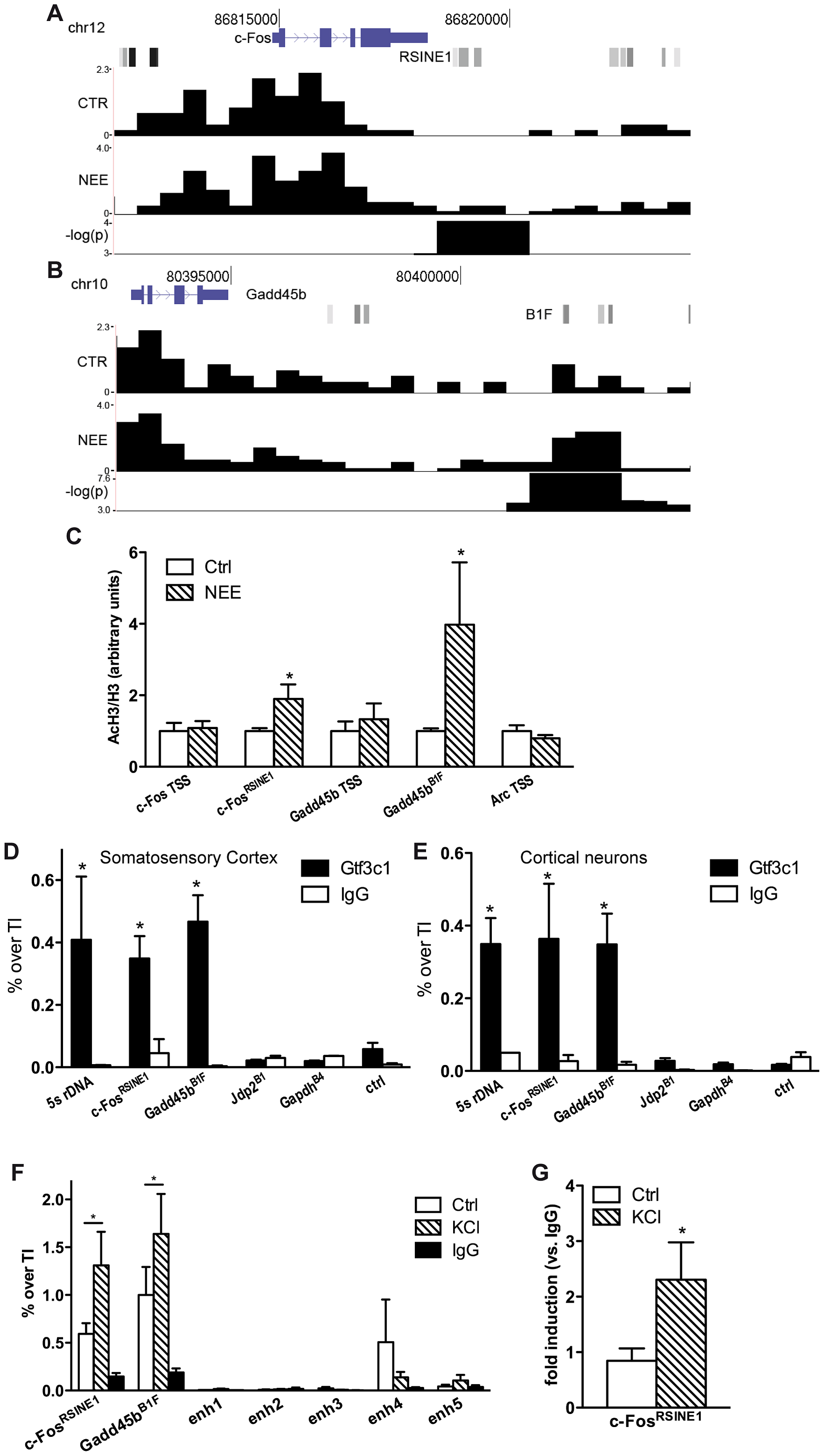 TFIIIC binds to <i>de novo</i> acetylated SINEs near inducible genes.